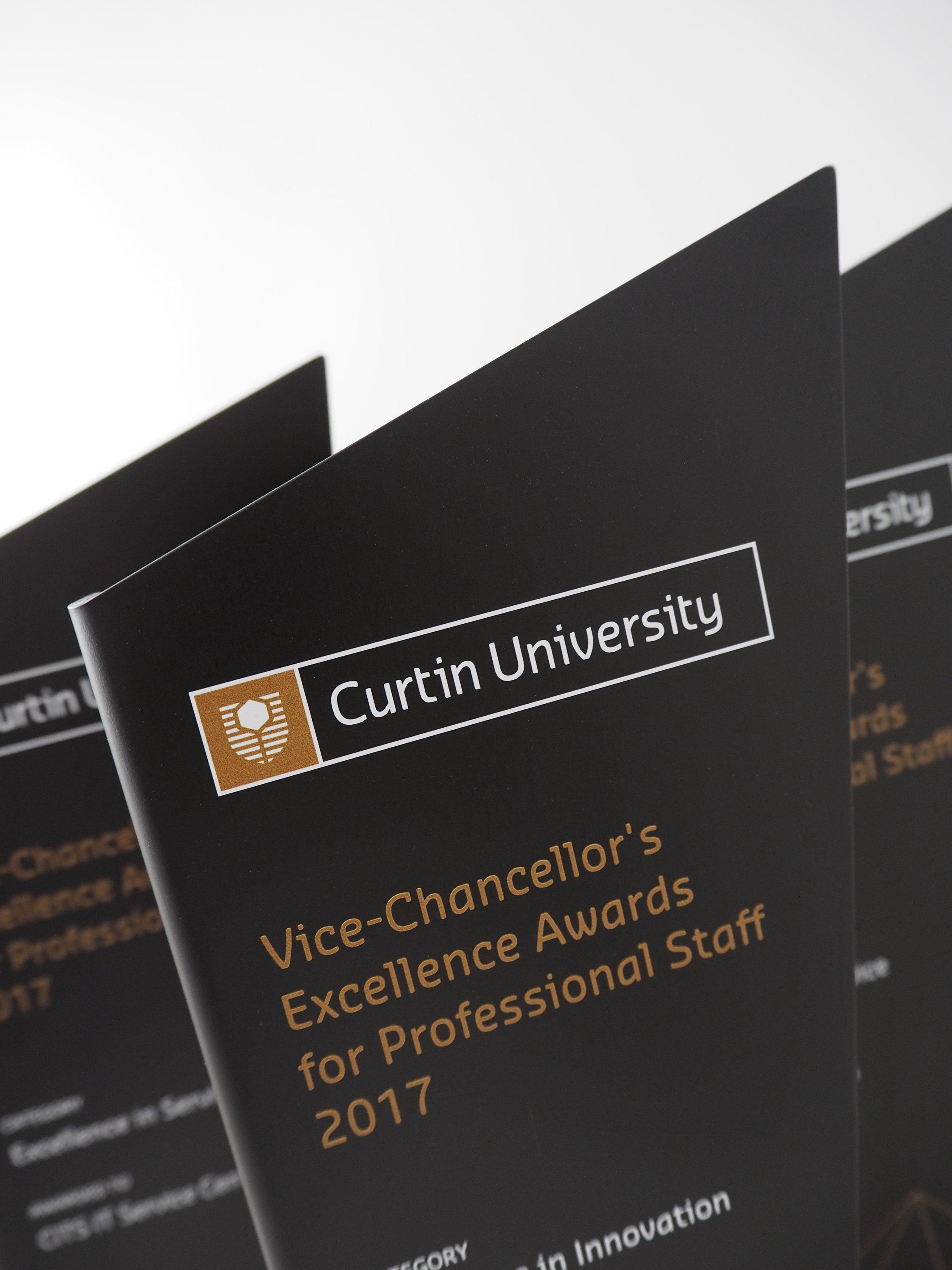 curtin-university-VC-excellence-awards-staff-trophy-04.jpg