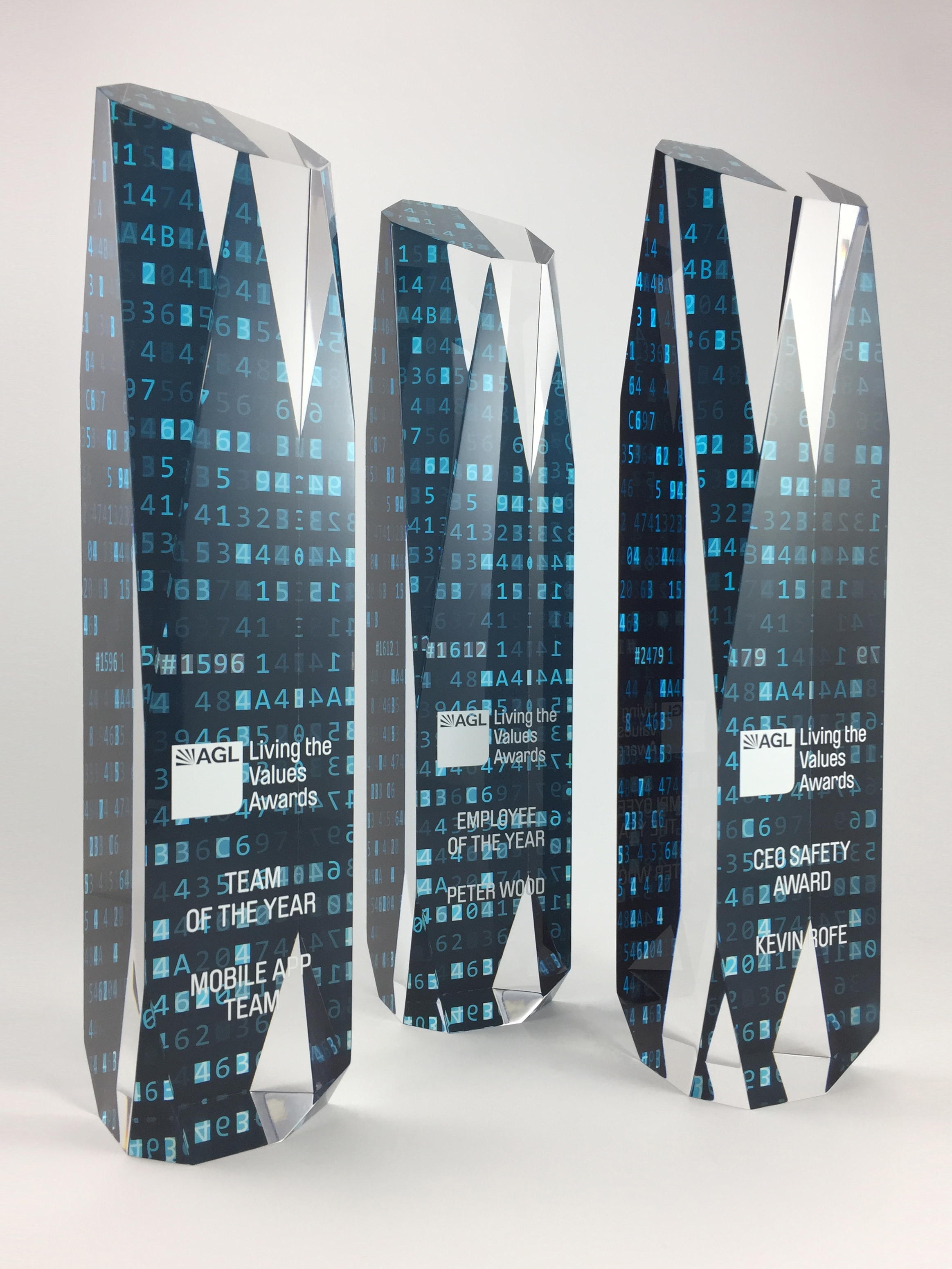 AGL-acrylic-graphic-print-trophy-award-03.jpg