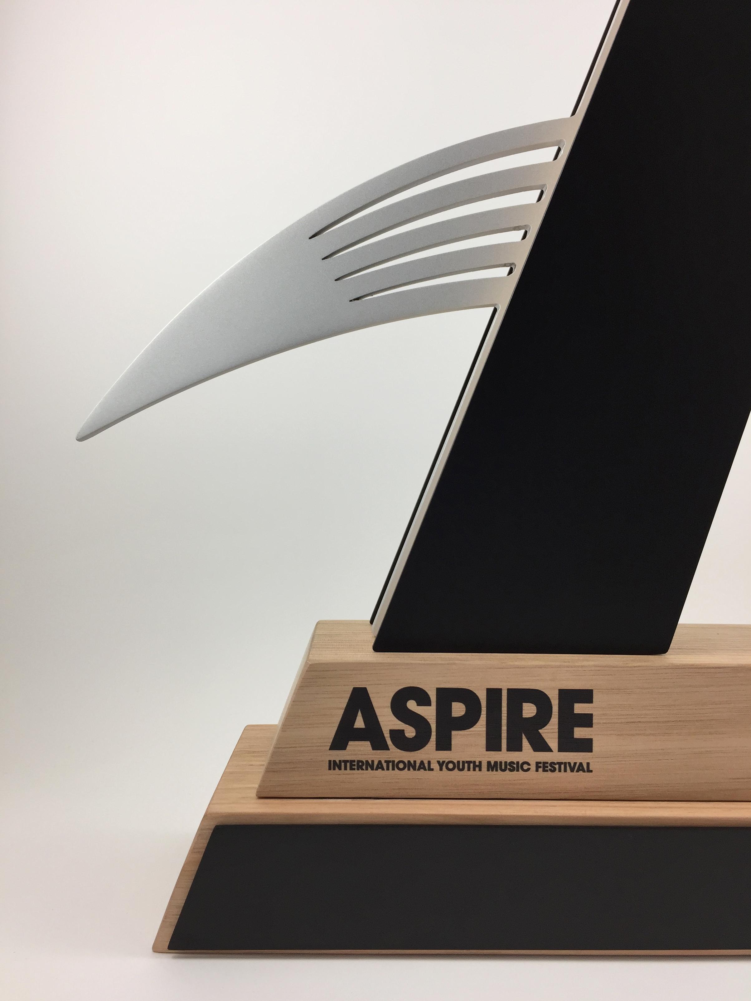 aspire-timber-metal-eco-trophy-awards-06.jpg