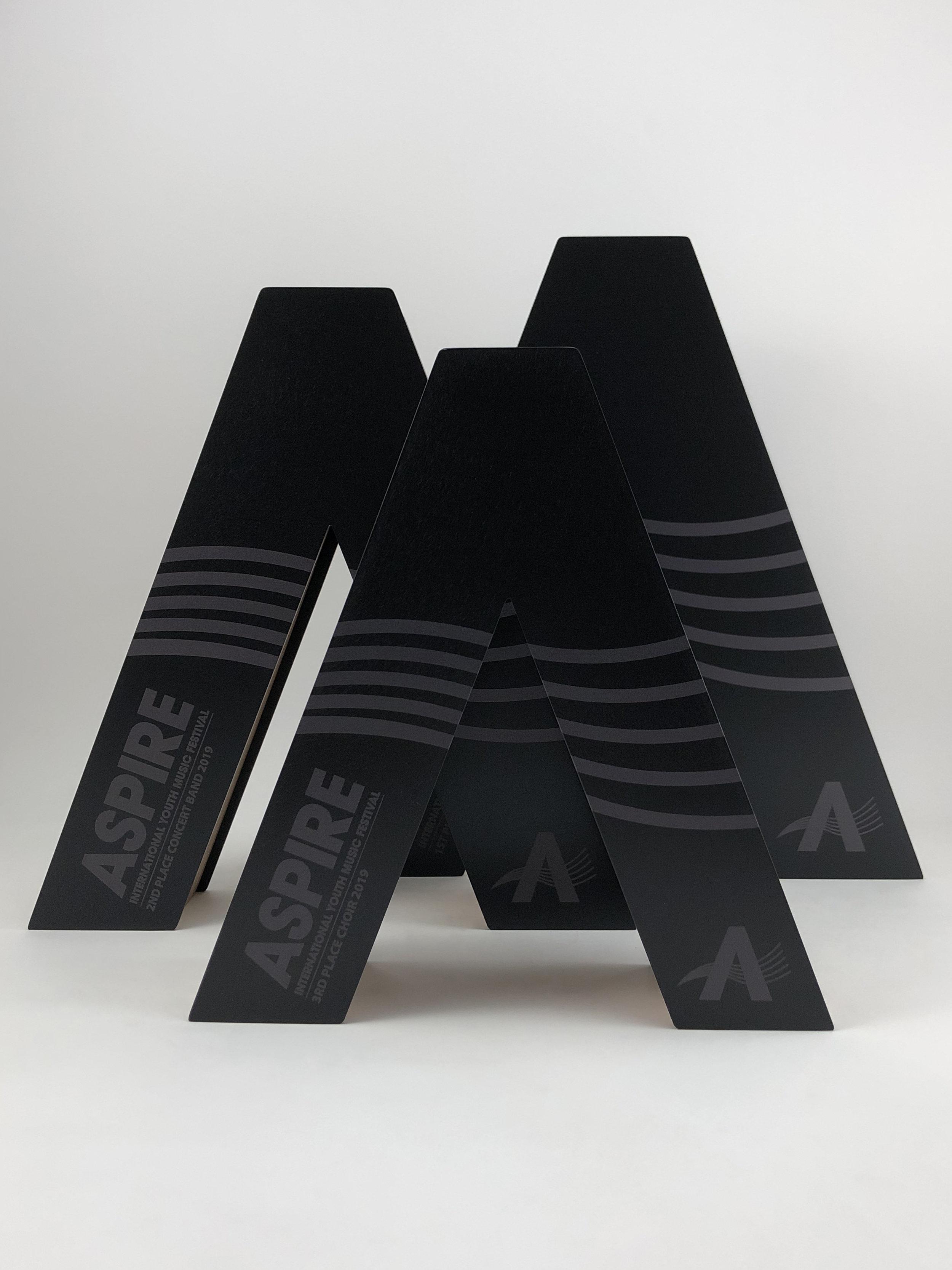 aspire-international-youth-music-festival-timber-metal-eco-trophy-awards-03.jpg