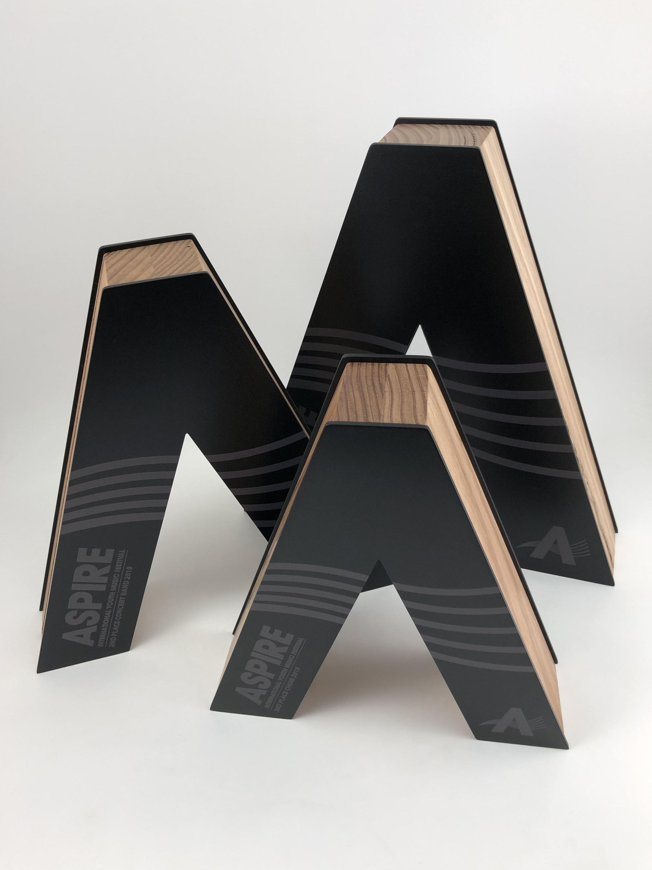 aspire-international-youth-music-festival-timber-metal-eco-trophy-awards-04.jpg