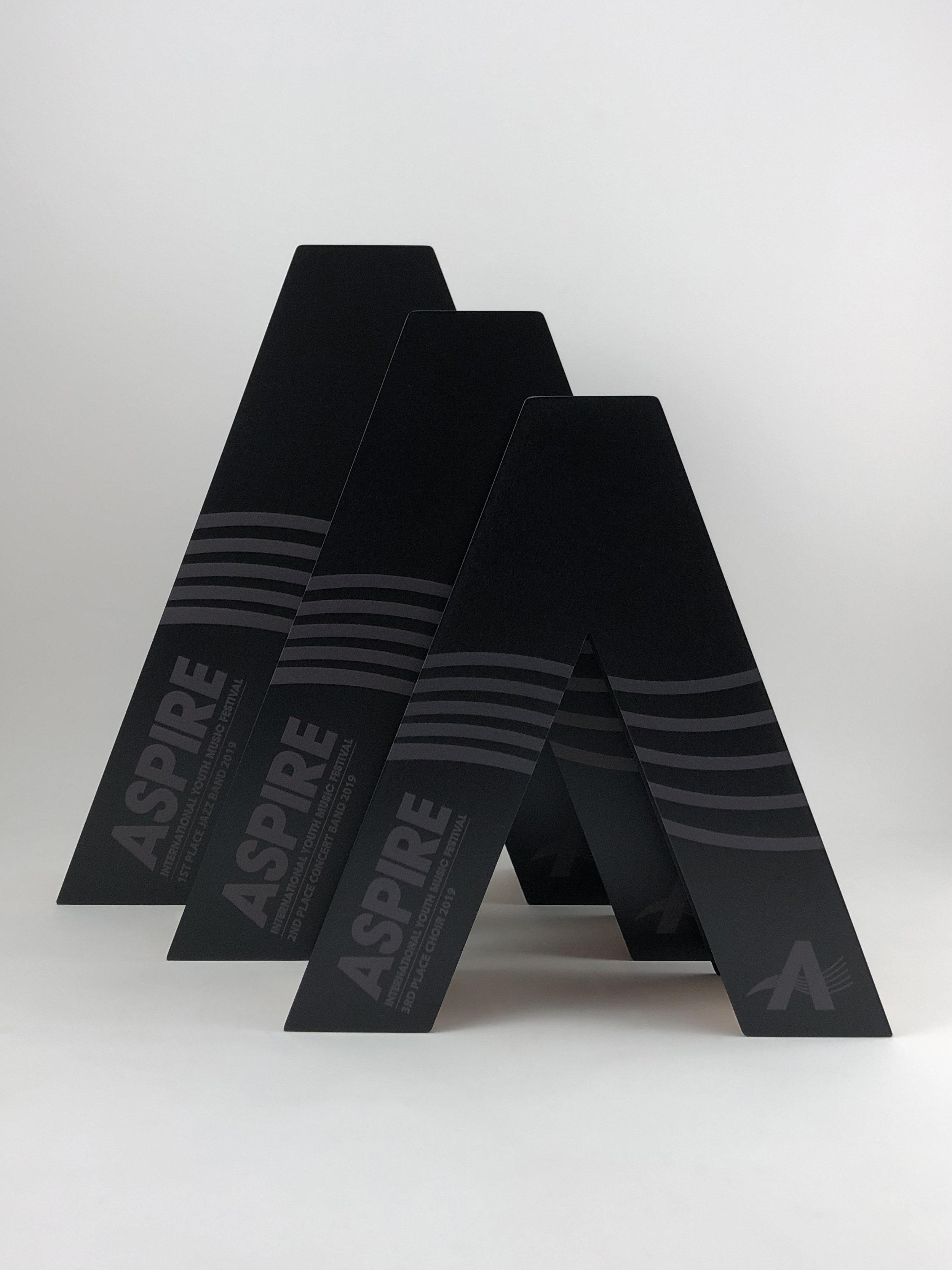 aspire-international-youth-music-festival-timber-metal-eco-trophy-awards-06.jpg
