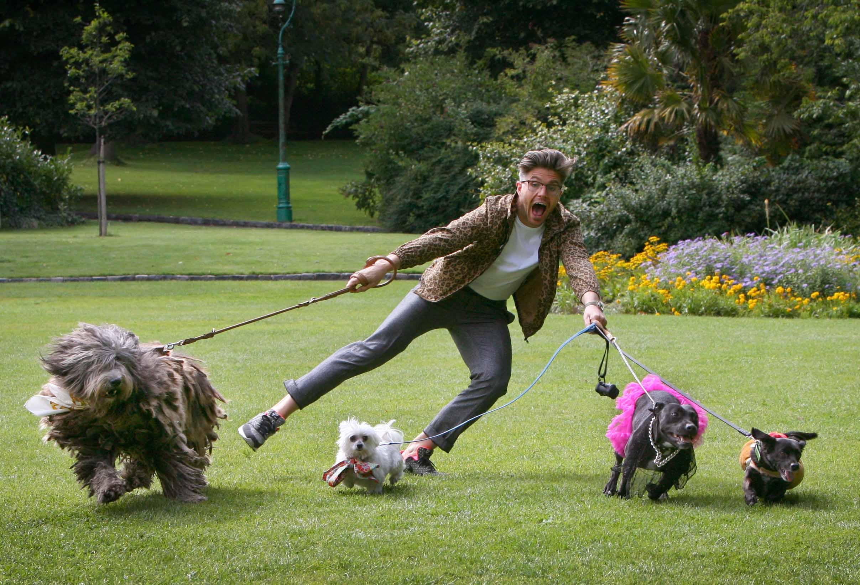 NO FEE 2 The Doggie Do fest.jpg