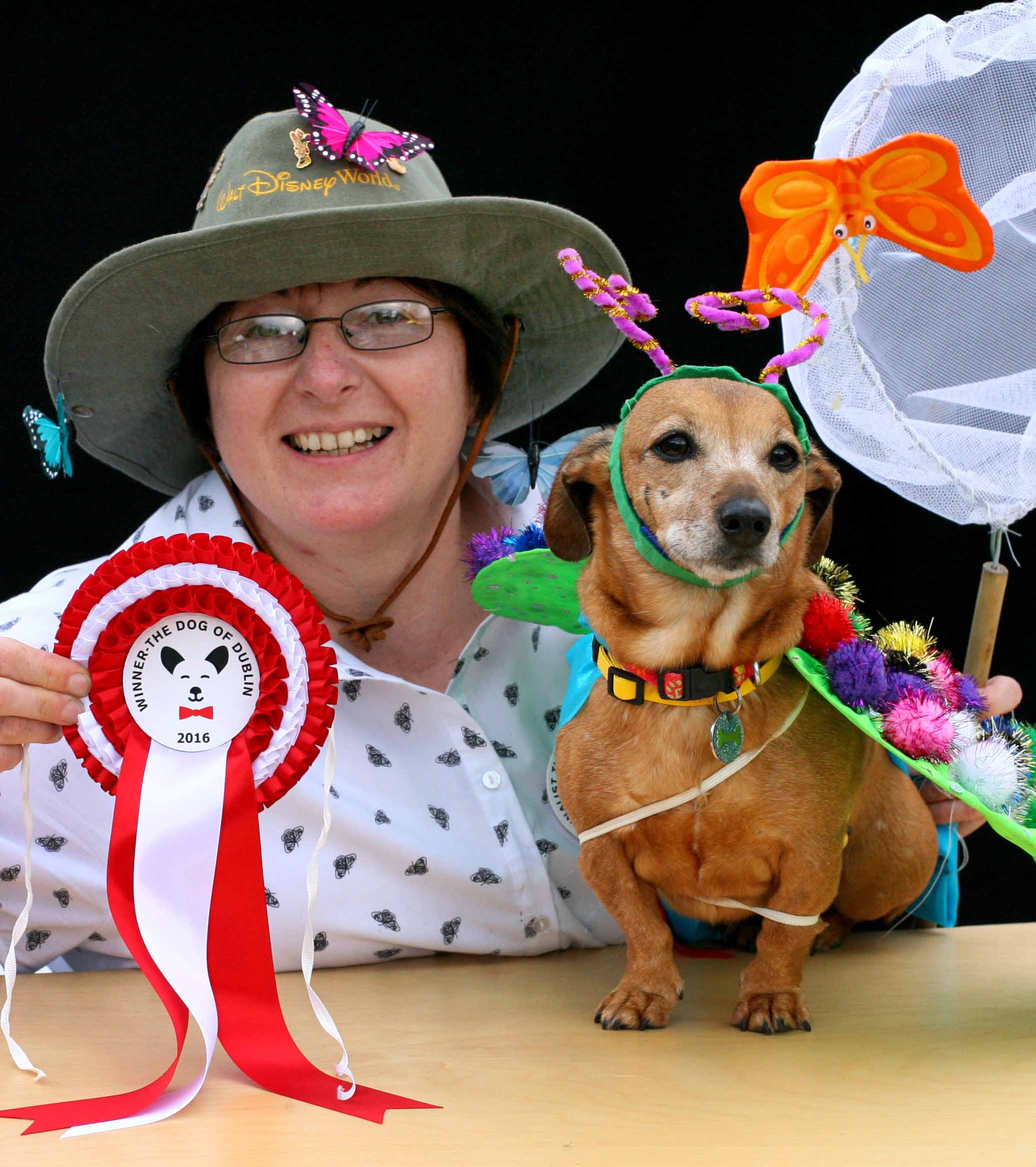 THE DOG OF DUBLIN 2016 WINNER:  Tippi the 'doggerfly' (butterfly) & her friend Catriona