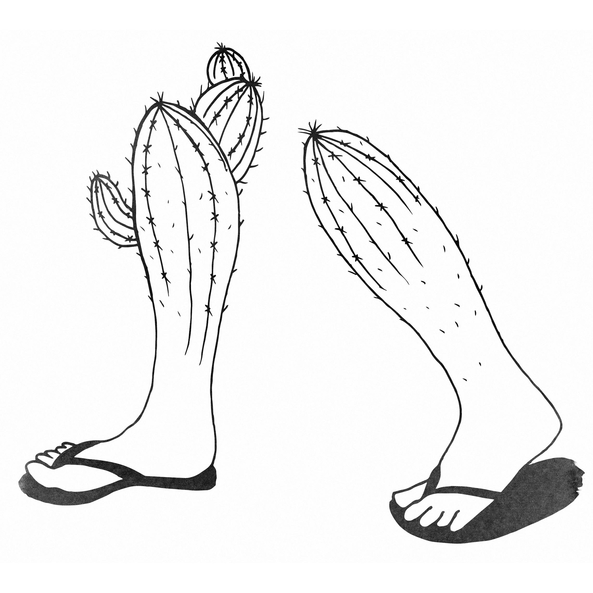 cactus-feet-2.jpg