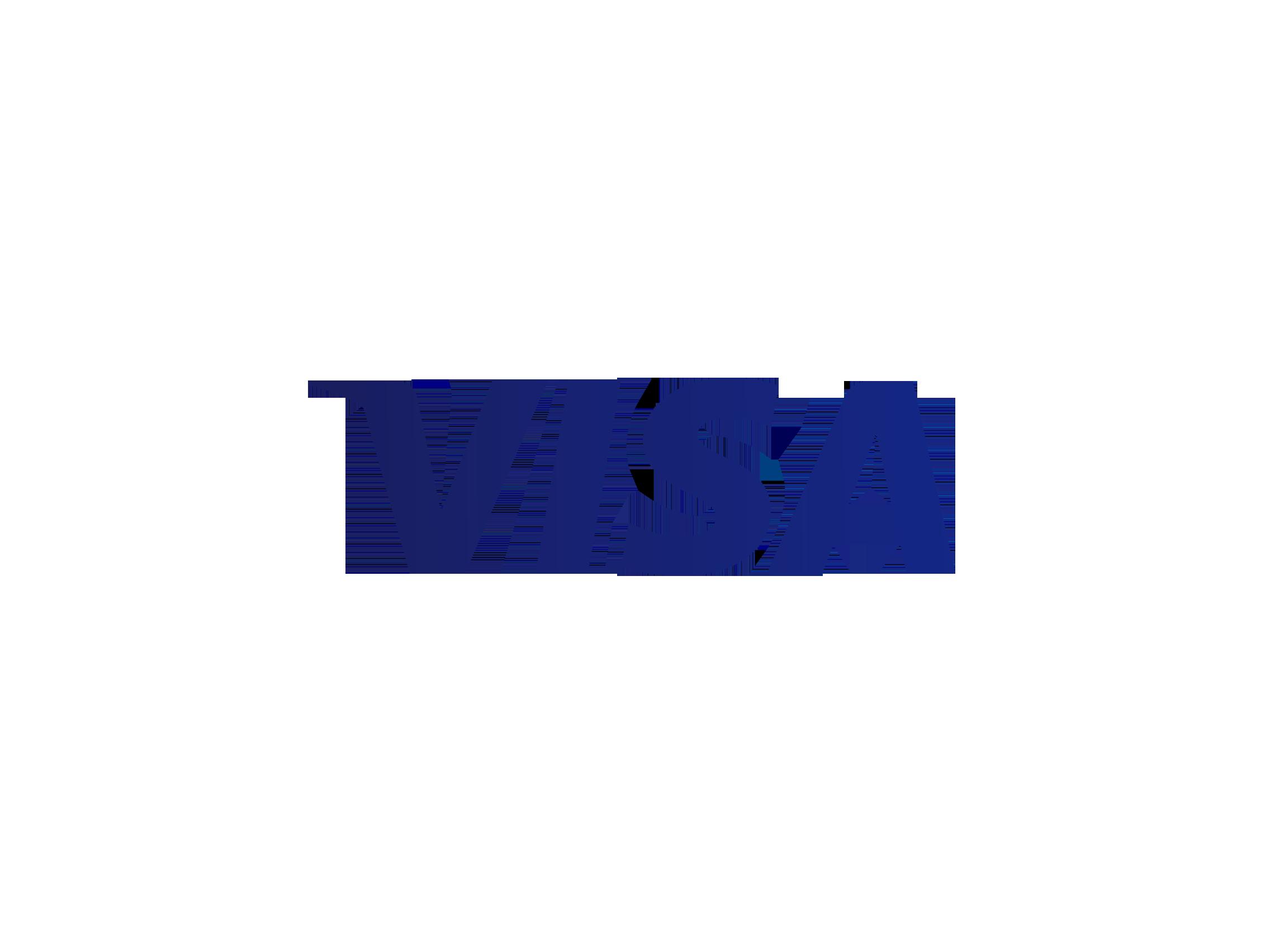Visa-2014-logo-blue.png