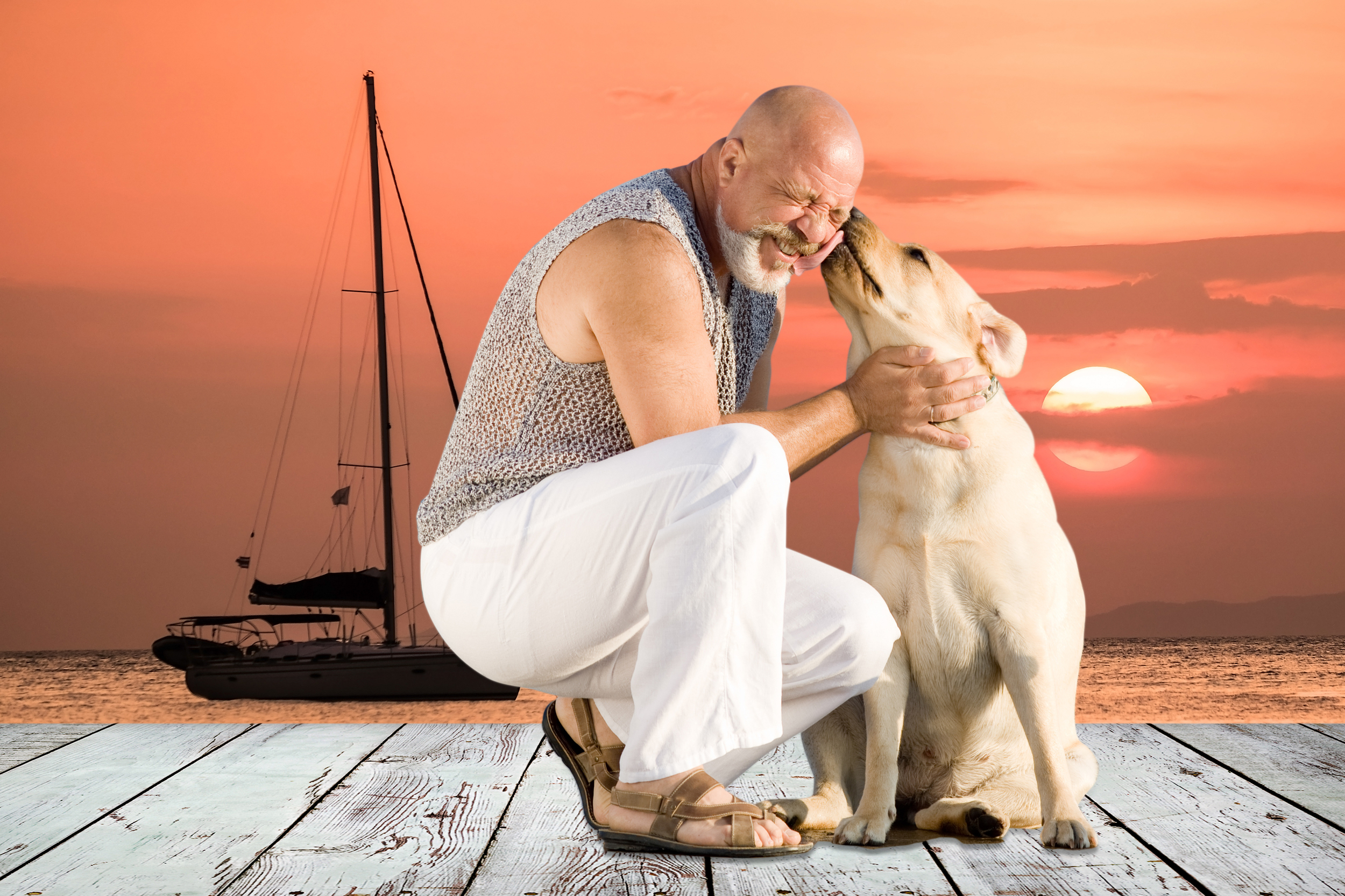 Dog with man on beach with sailing yacht
