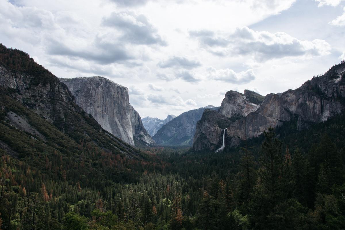 Cali Adventure-22.jpg