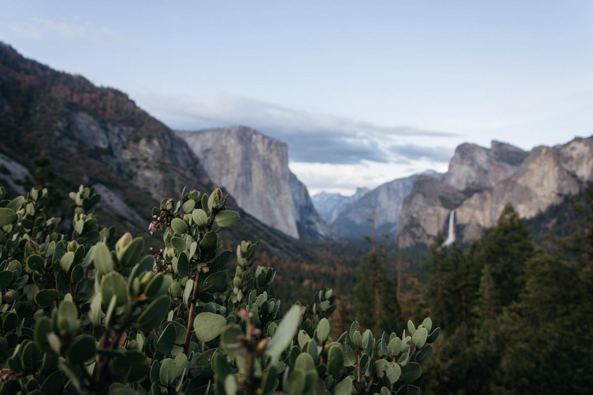 Cali Adventure-31.jpg