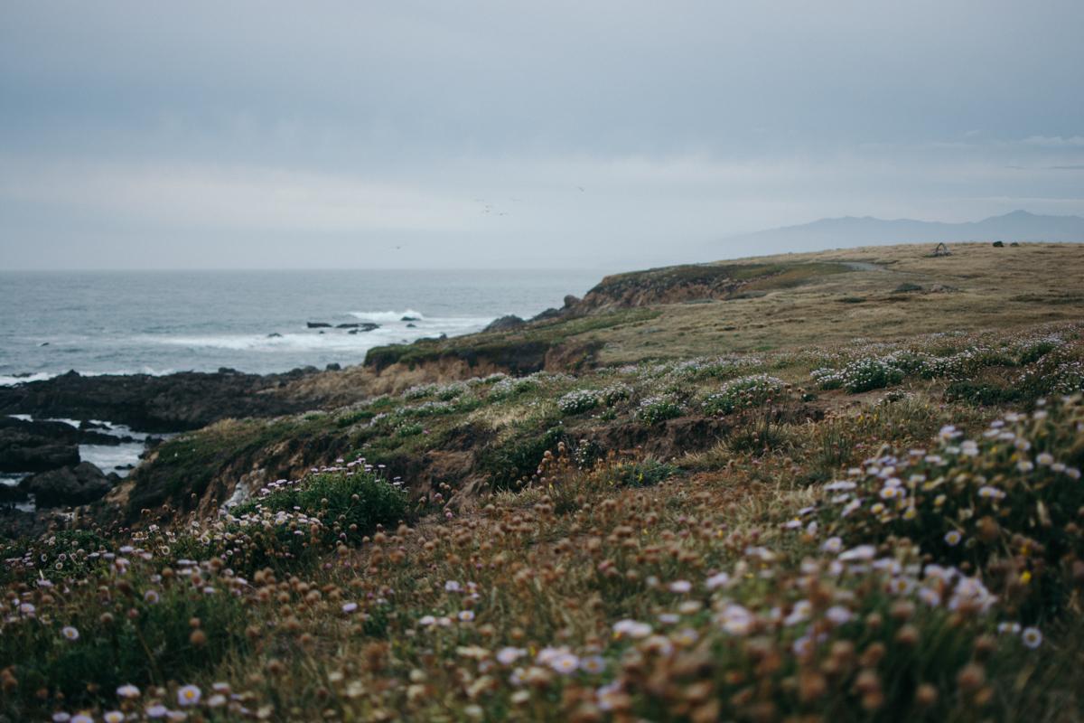 Cali Adventure-46.jpg
