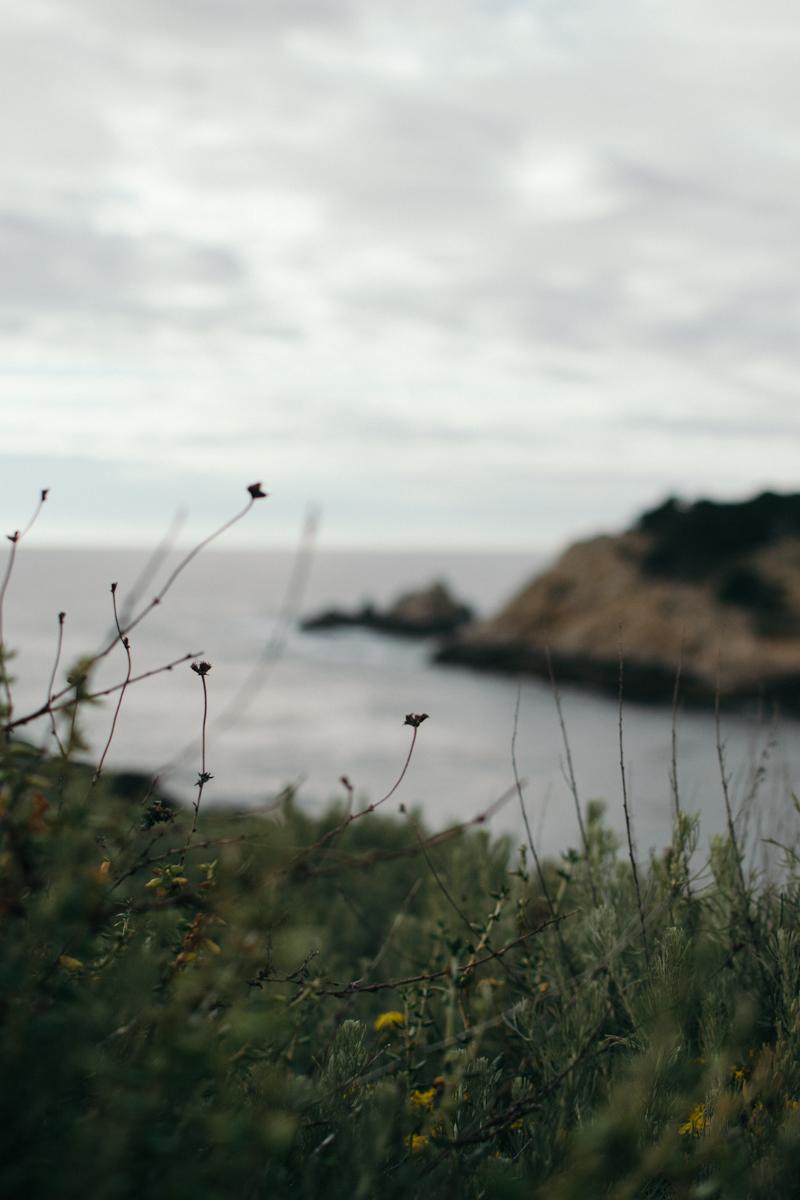 Cali Adventure-58.jpg