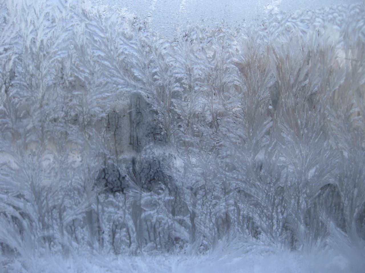 I love winter so much.