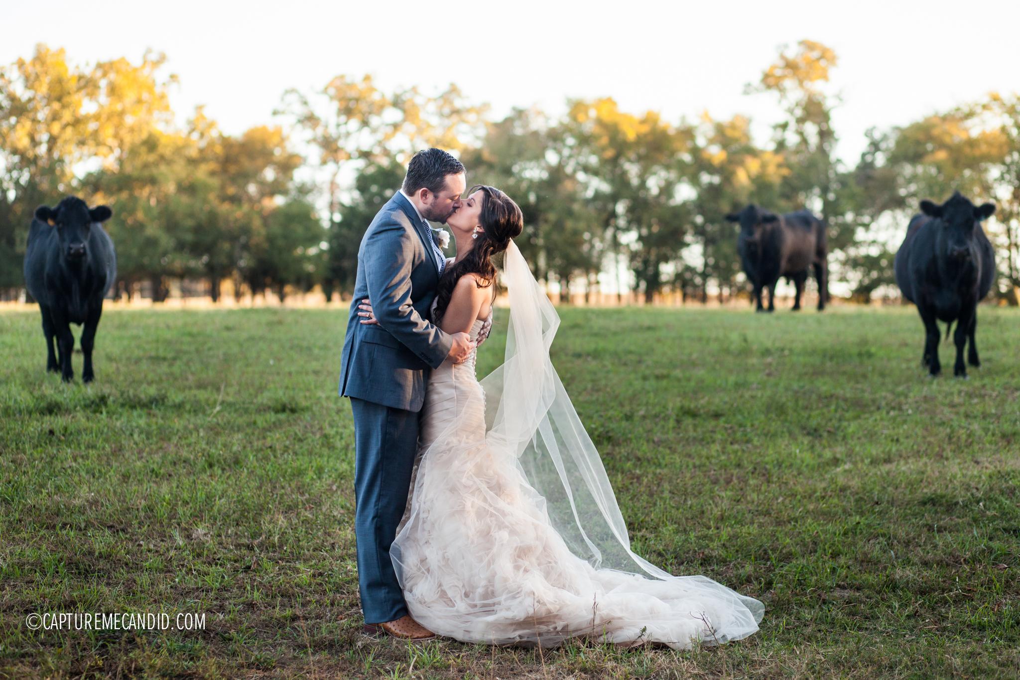 Morning Glory Farms, Monroe, NC Photography: CaptureMeCandid Photography