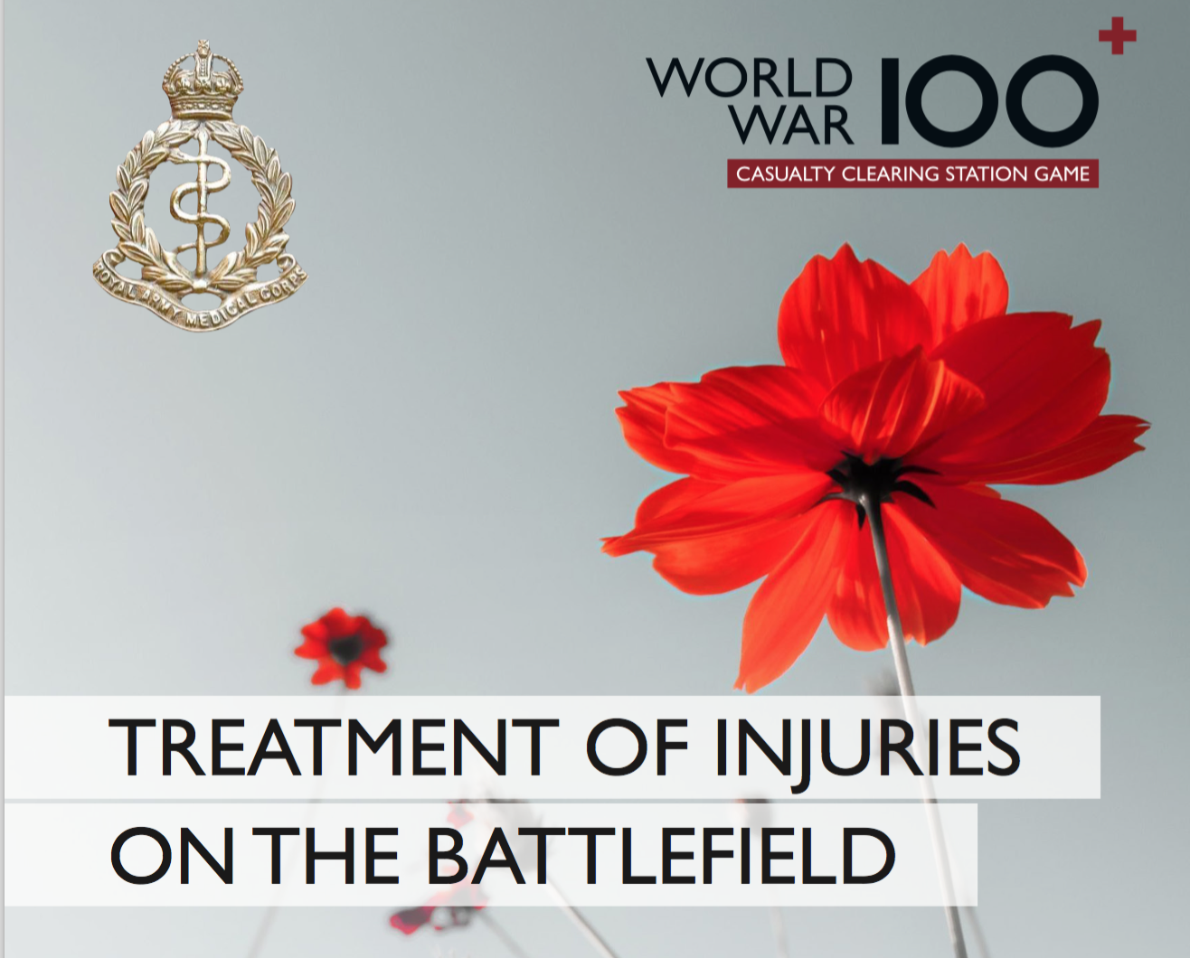 Treatment of Injuries on the Battlefield