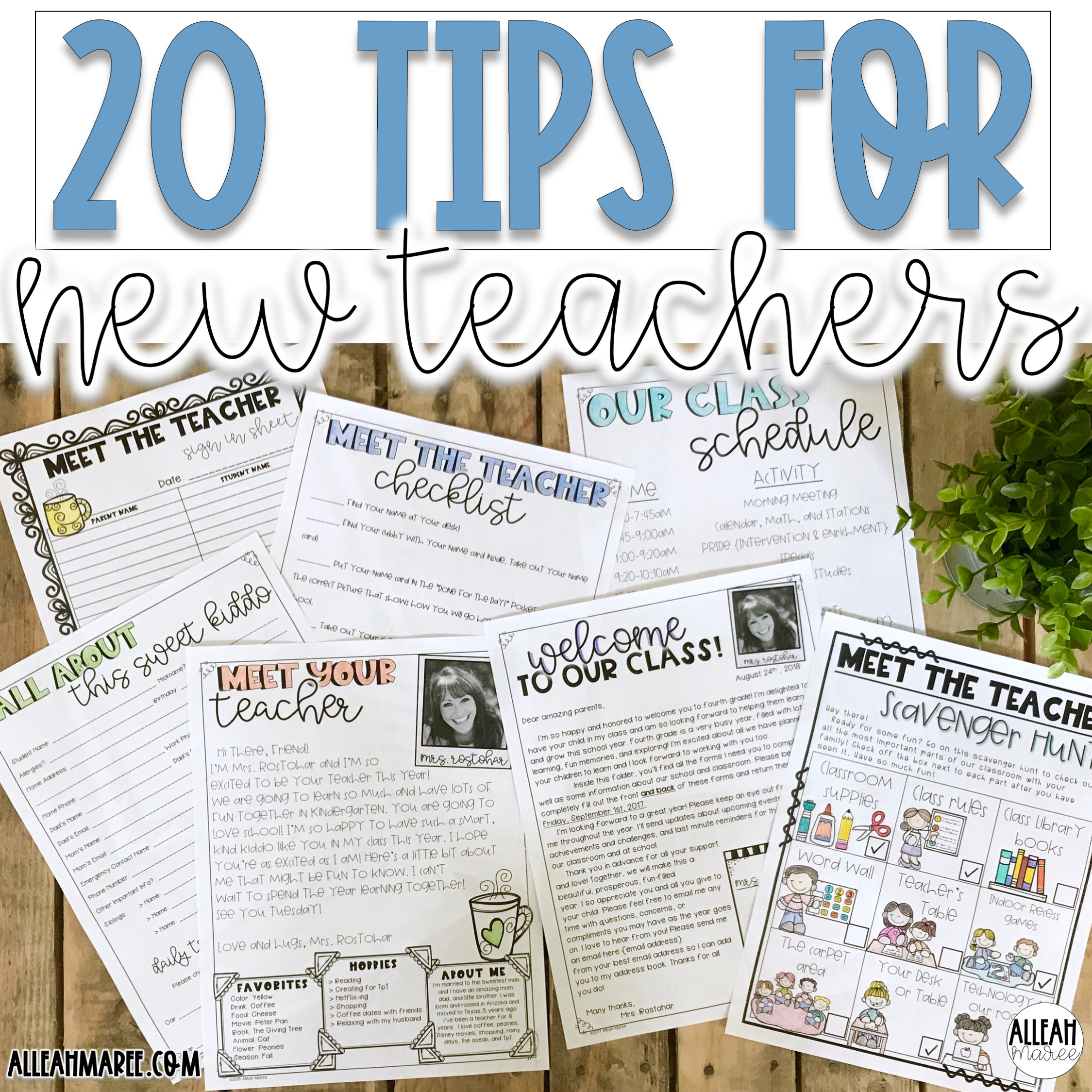 20 Tips for New Teachers — Alleah Maree