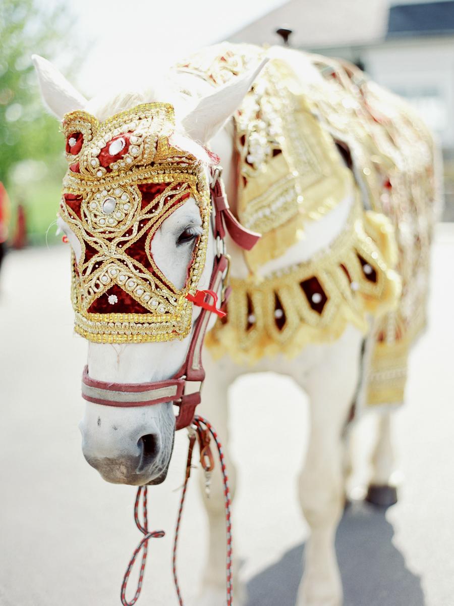 Indian-Wedding-Photographer-New-York-022.jpg
