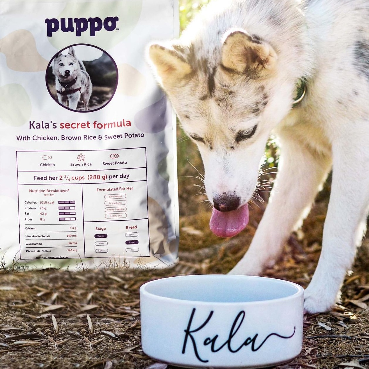 PUPPO - PERSONALIZED DOG FOOD