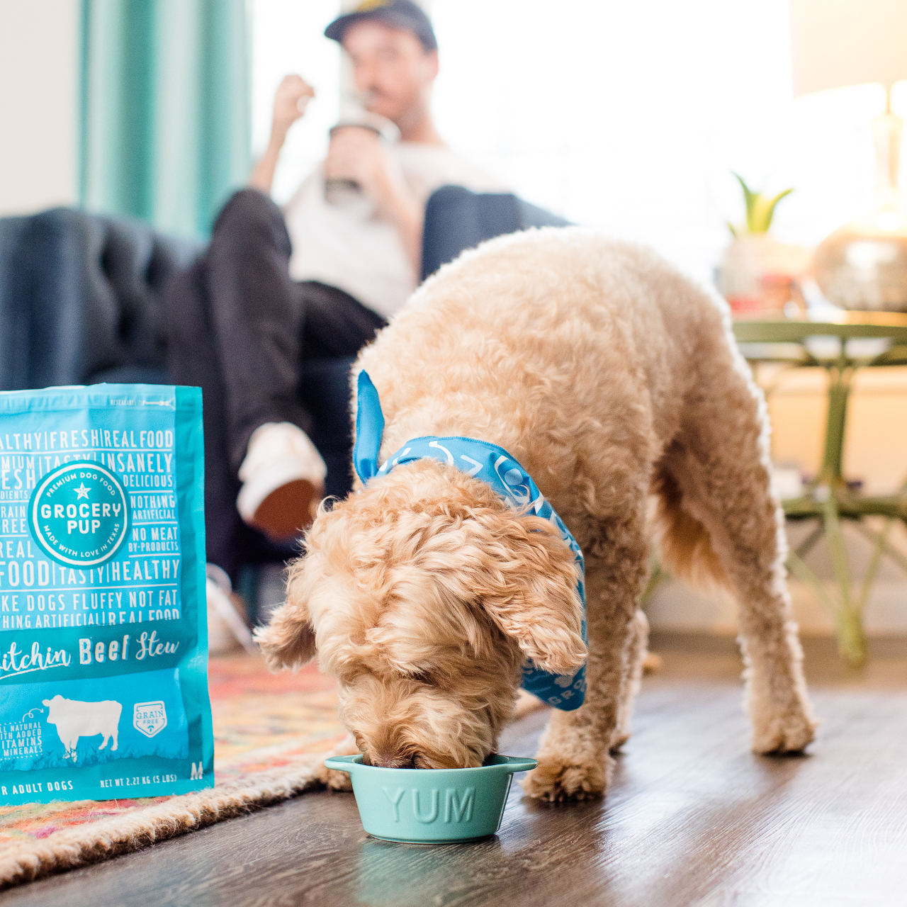 GROCERY PUP - HOME DELIVERY DOG FOOD