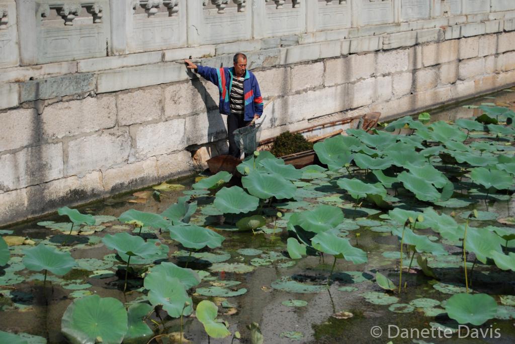 Summer Palace Pond Worker_0035.jpg