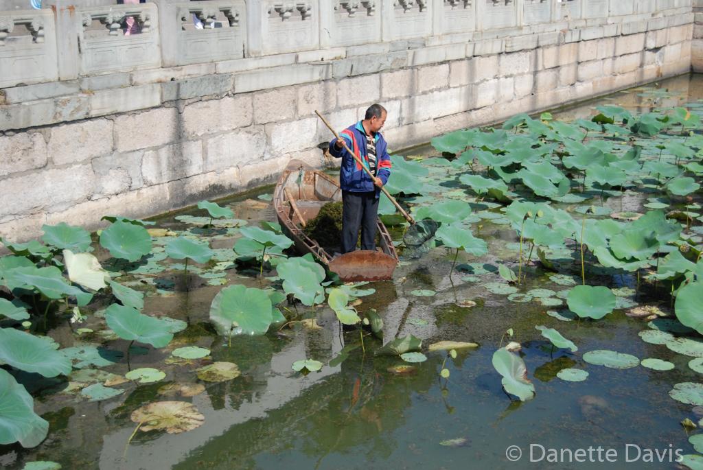 Summer Palace Pond Worker_0037.jpg