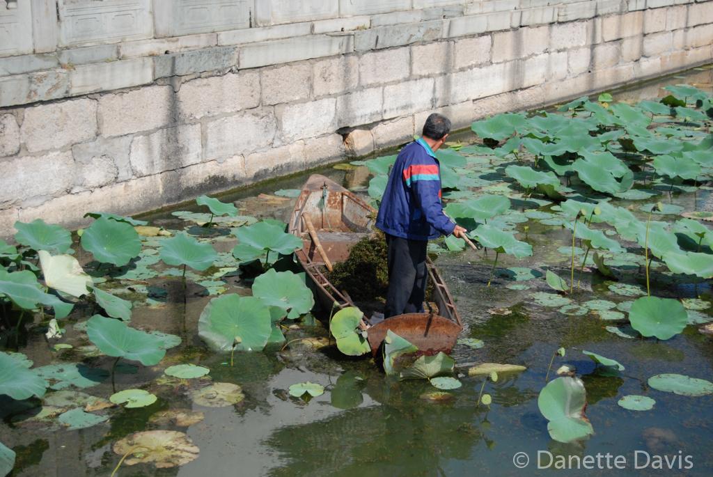Summer Palace Pond Worker_0038.jpg