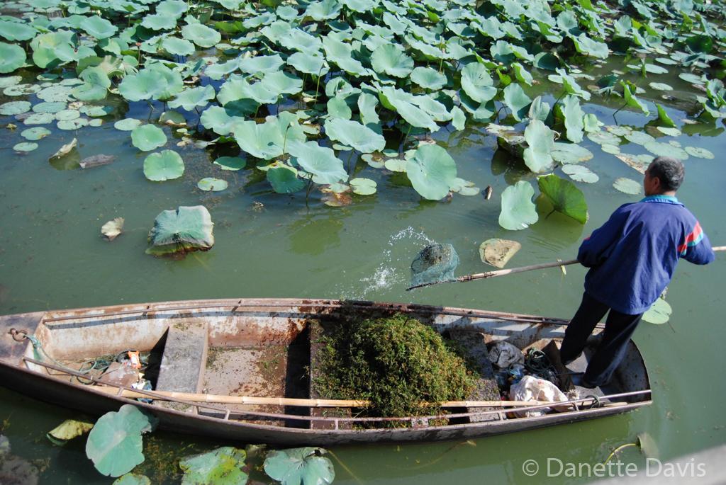 Summer Palace Pond Worker_0041.jpg