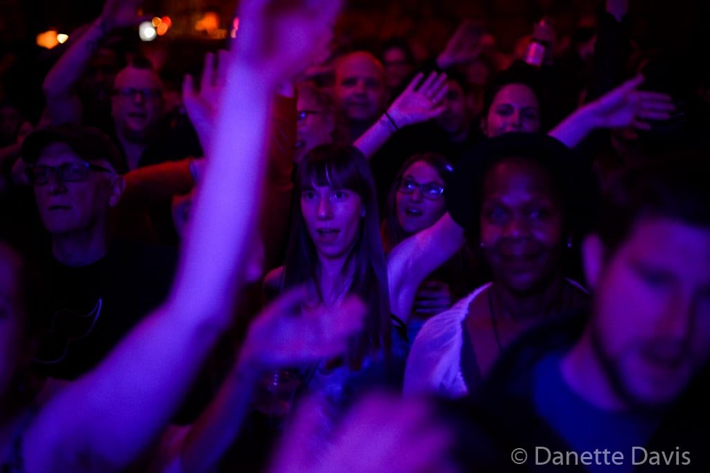 Audience, Grace Love & The True Loves,  2016 , Tractor Tavern