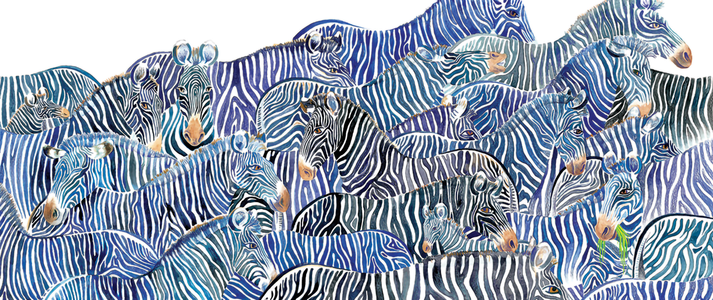 Zebras_web.jpg