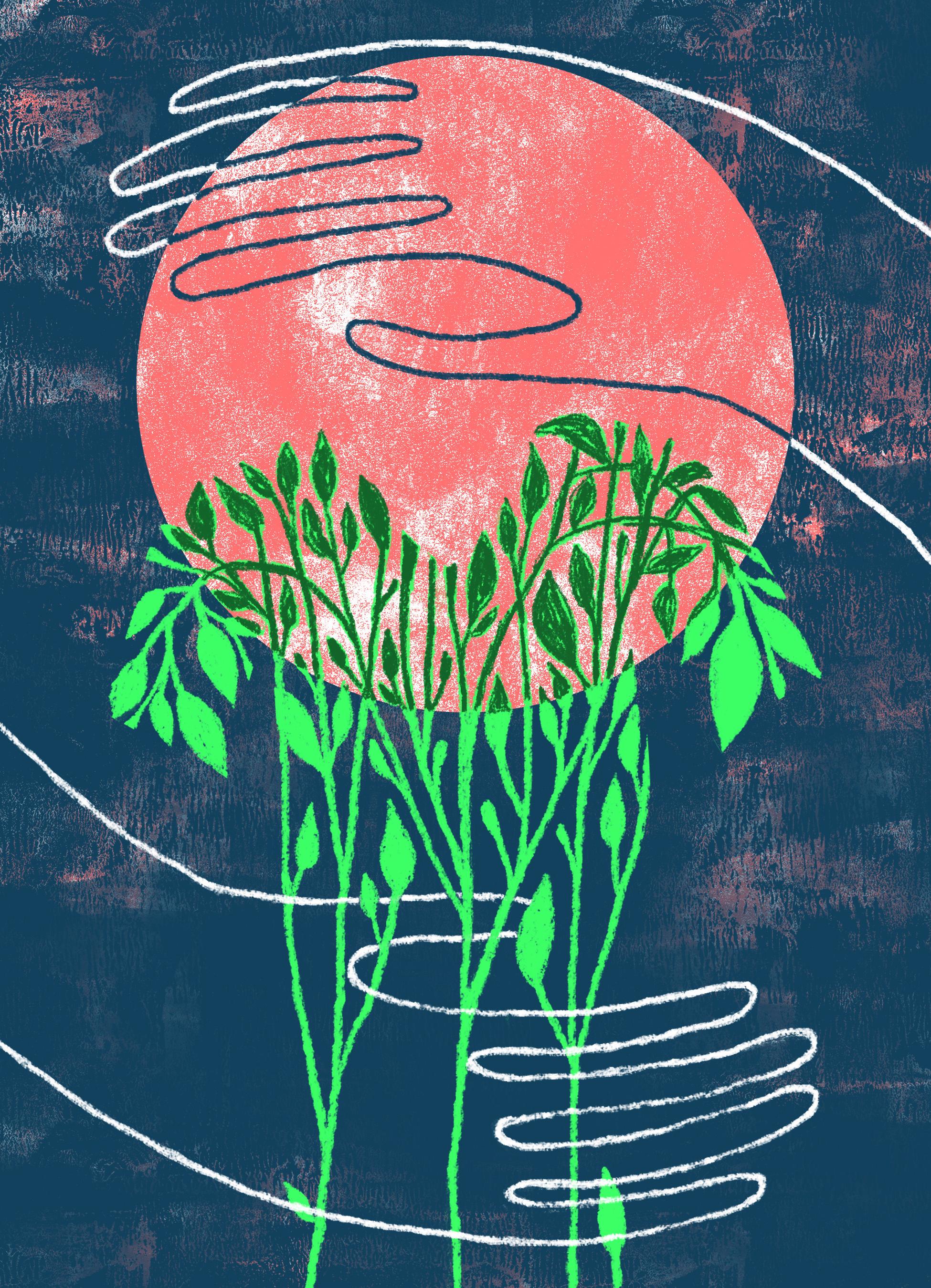 SustainableFashun.jpg