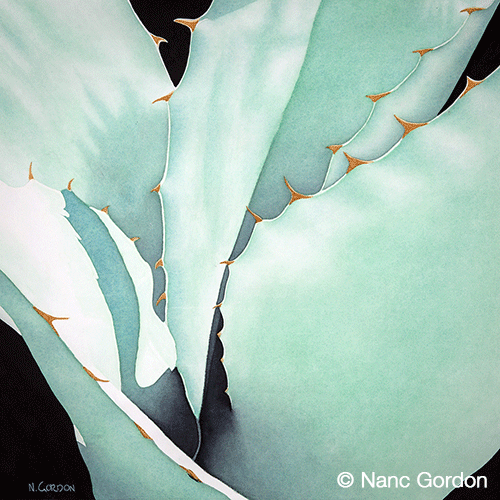 """Agave Abstraction,  Watercolor,    14"""" x 14""""   2017  125SHOW2017, Plano Art Association Show, Merit Award   2015  Southwestern Watercolor Society,  52nd Membership Exhibition"""