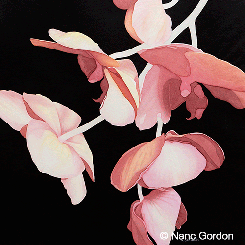 "Cascading Orchids,  Watercolor, 20"" x 20""  2017  125SHOW2017, Plano Art Association Show   2016  Southwestern Watercolor Society,   53rd Membership Exhibition,   Southwest Art Magazine Award"