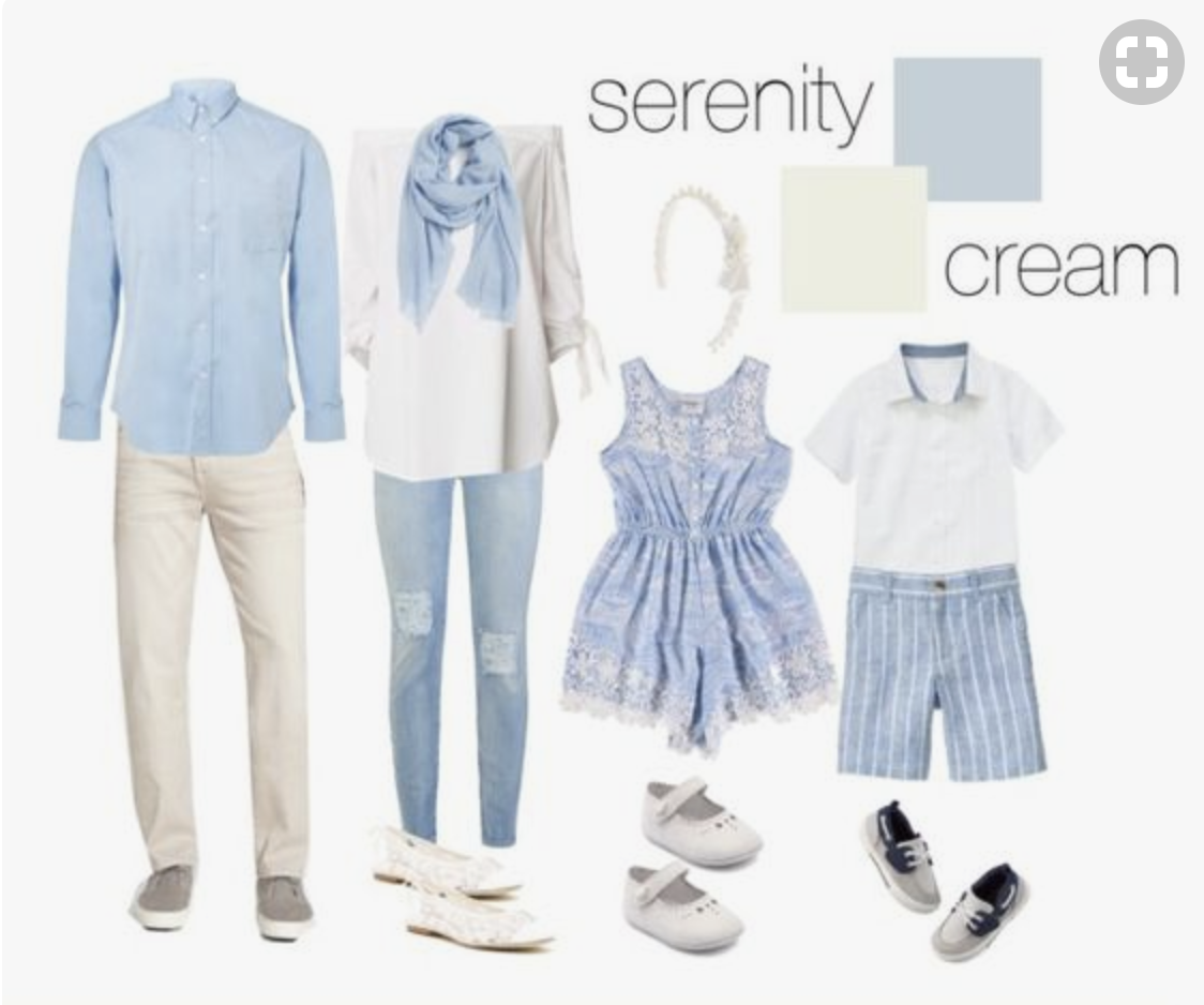 Blue and cream colour palette