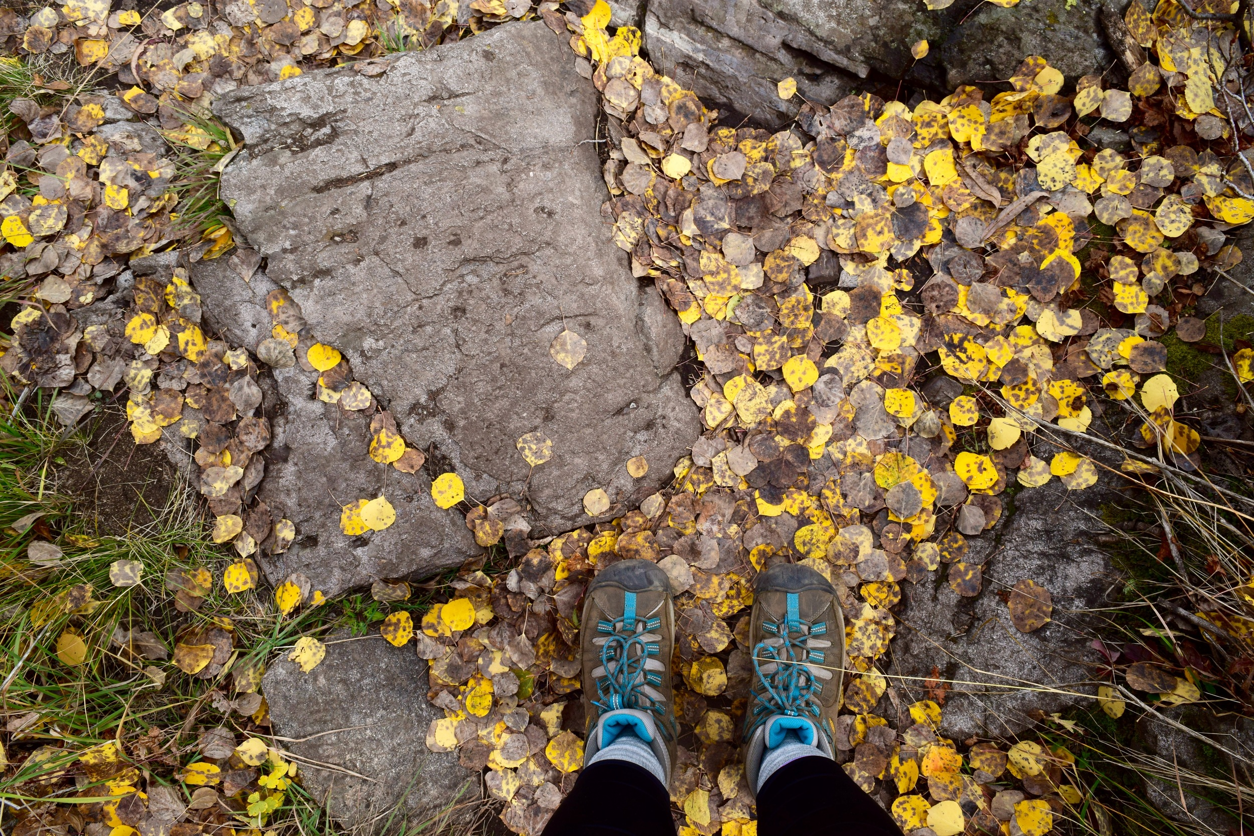 Love my KEEN boots, love the way leaves sound when you step on them, and love the way fall in Colorado smells.