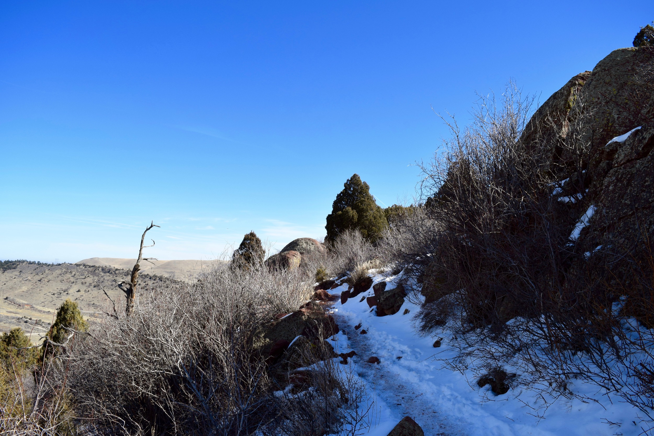 Half of this hike was like summer hiking. The other half was most definitely winter hiking.