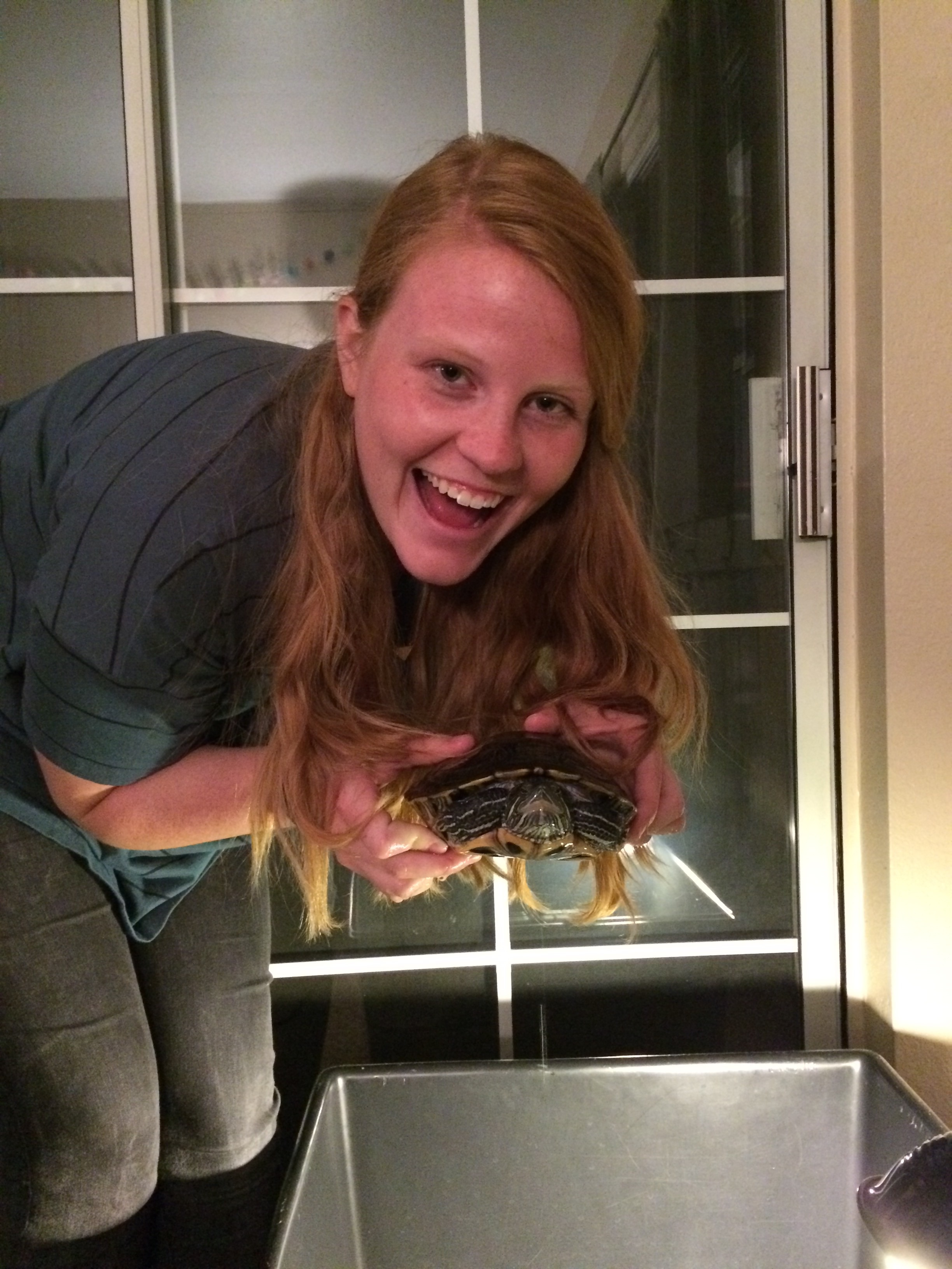 We got a super cute turtle named Percy and we love her very much!