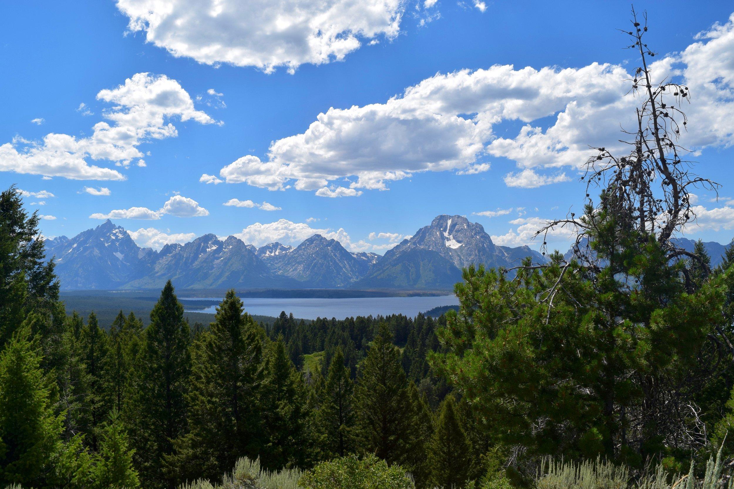 Overlooking Jackson Lake