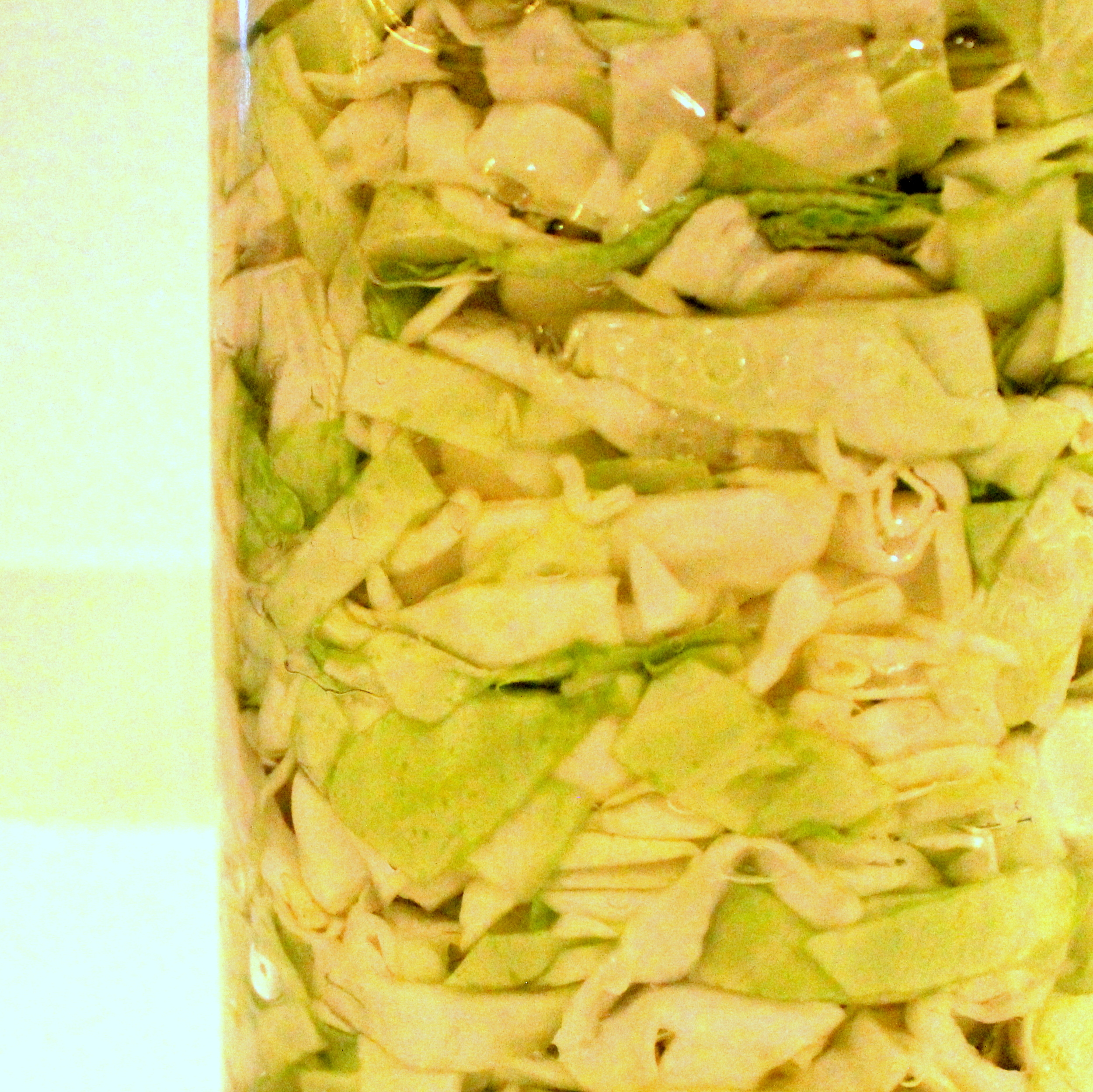 Homemade Sauerkraut and Probiotics from Peas and Hoppiness - www.peasandhoppiness.com