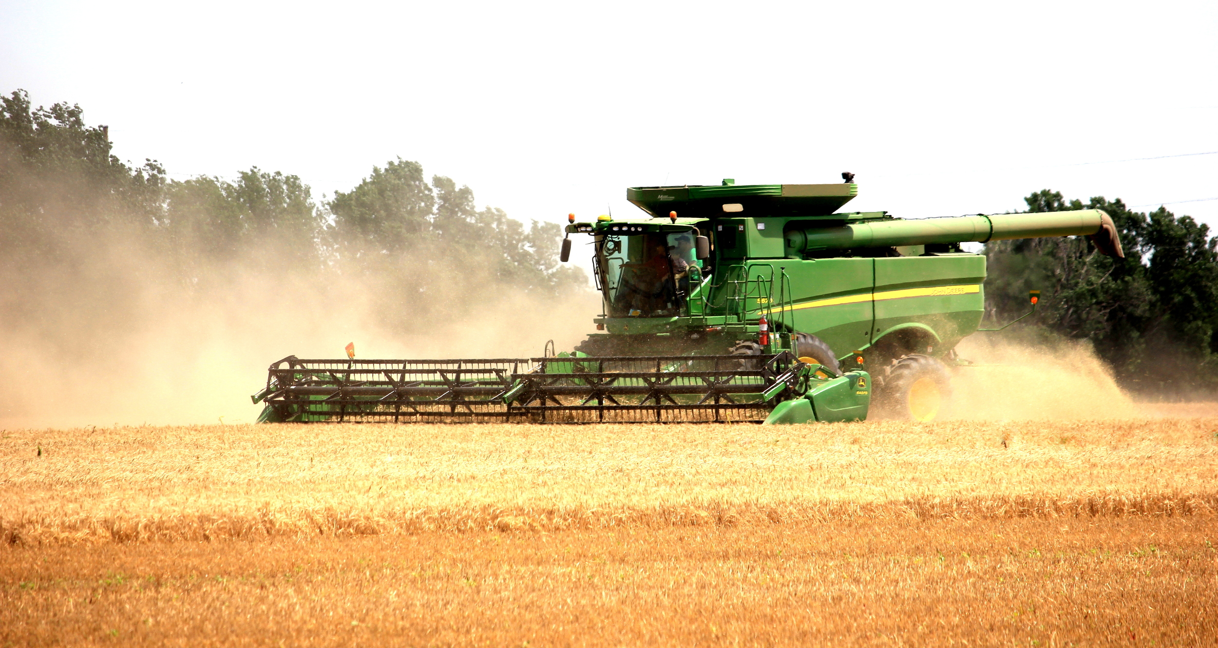 Wheat harvest 2014