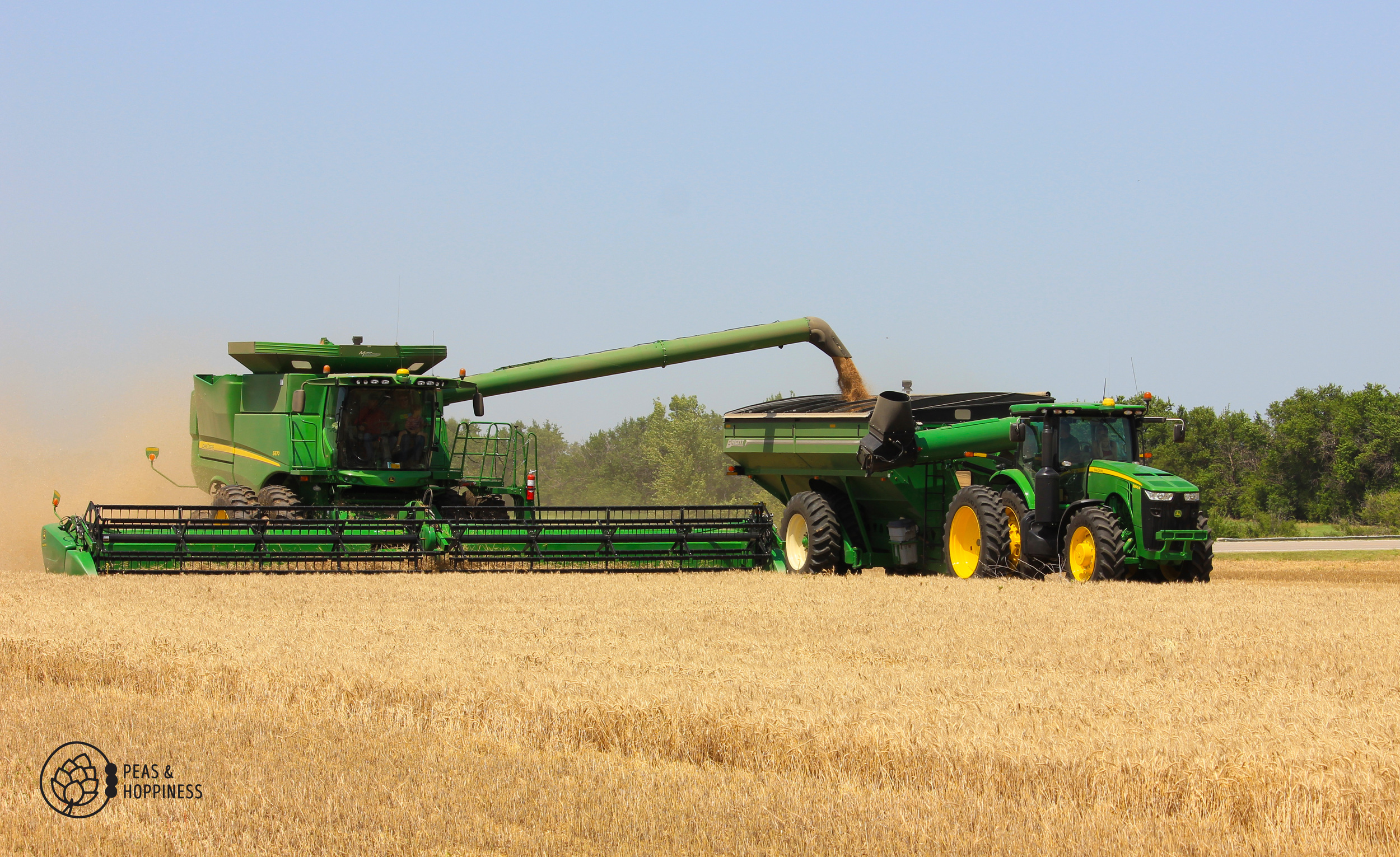 Combine unloading into the grain cart. Instead of stopping to take time to unload directly into the semi, unloading into a grain cart which then takes the grain to the semi allows Dad to continuously cut wheat without missing a beat.