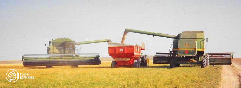 Flashback to wheat harvest 1989