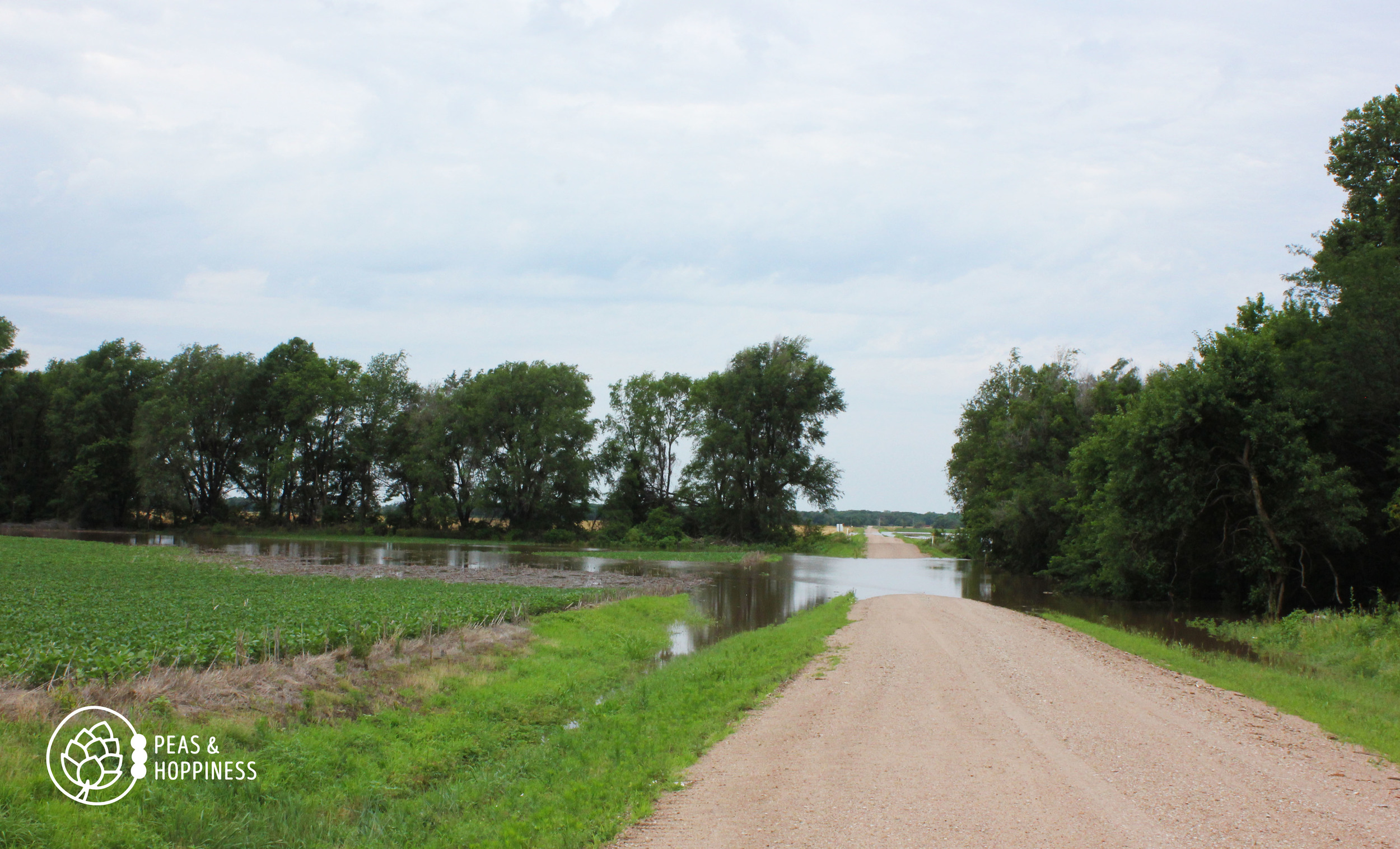 Water, water, everywhere! Flash flooding all across Rice County last weekend