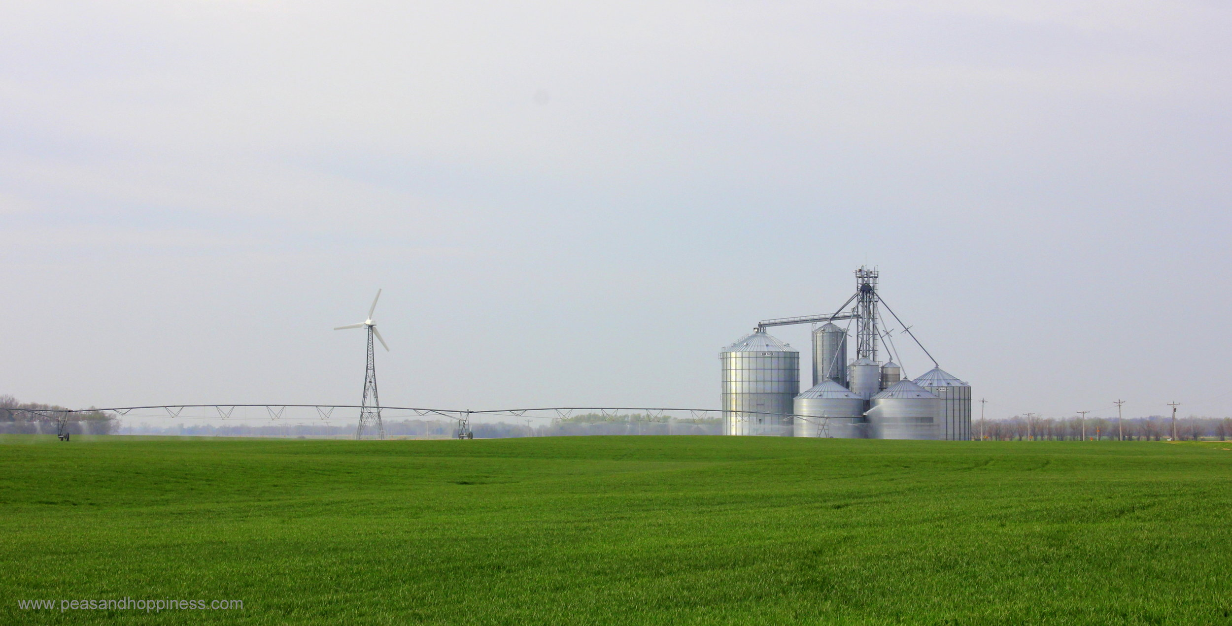 The wind turbine powers the irrigation system at Scheufler Farms