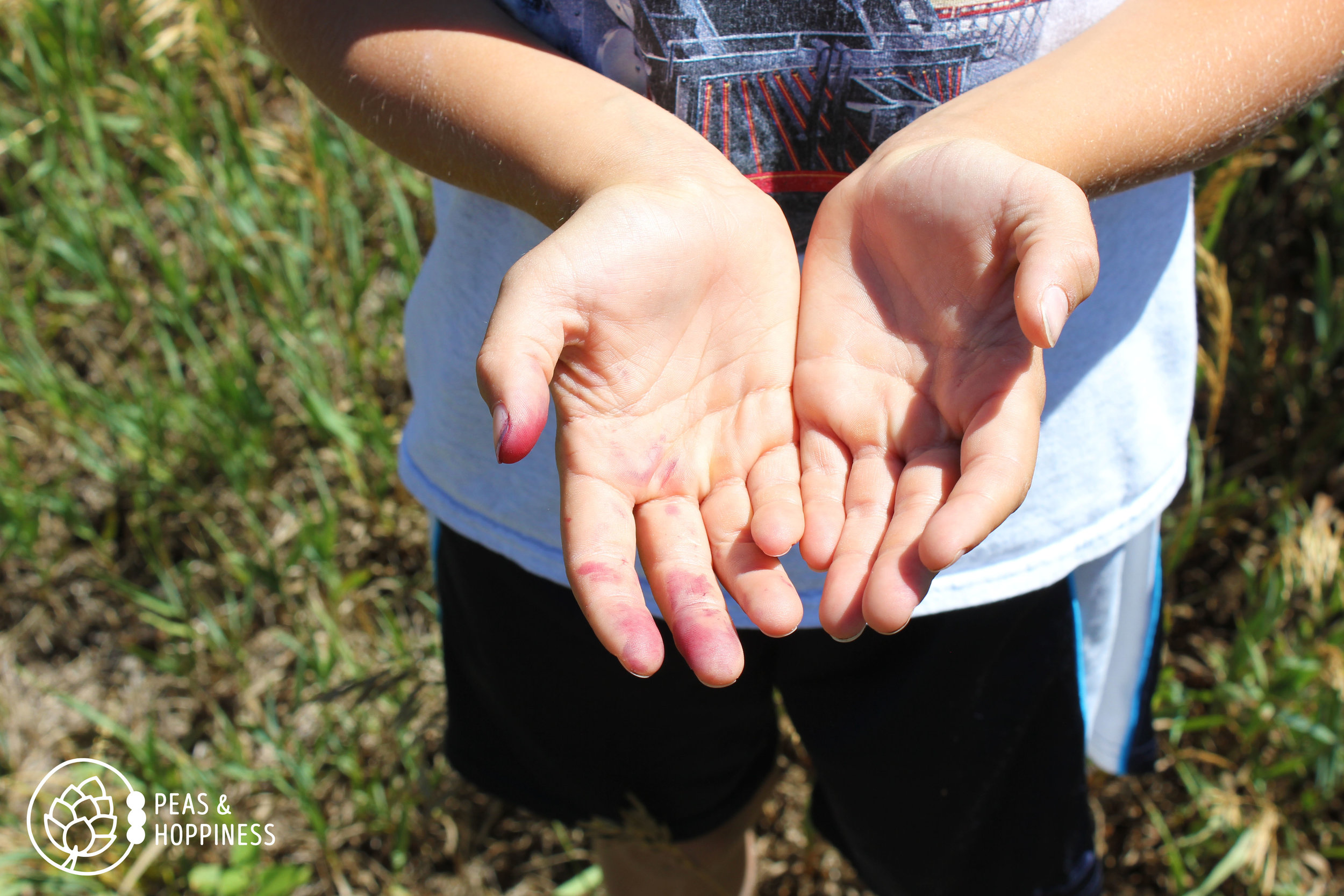 Small, stained hands