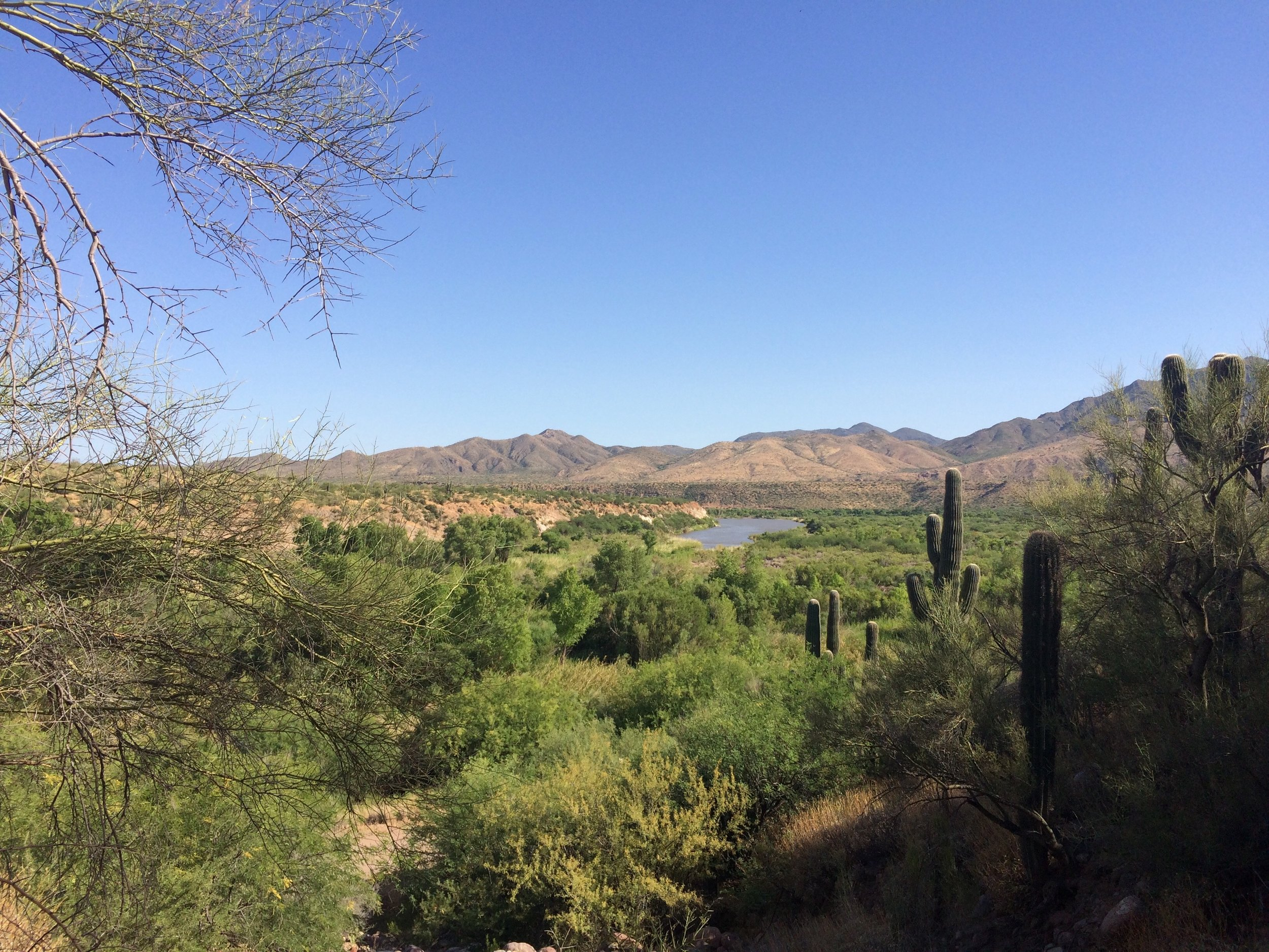Somewhere beautiful at the Tonto National Forest.