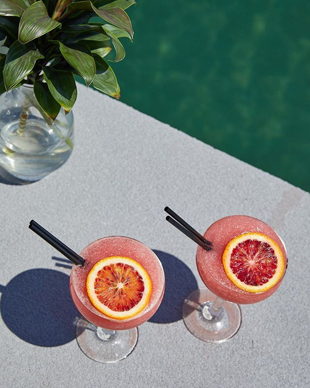 Perfect day for a summer cocktail at #CatalinaRoseBay x @paulmcmahonphoto @imogeneroache