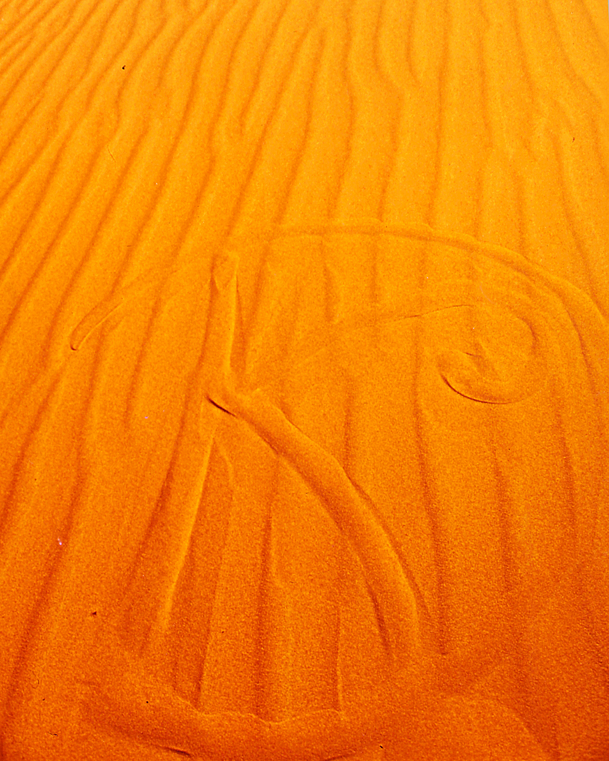 my initials in the Sahara sand, Southern Morocco 1995