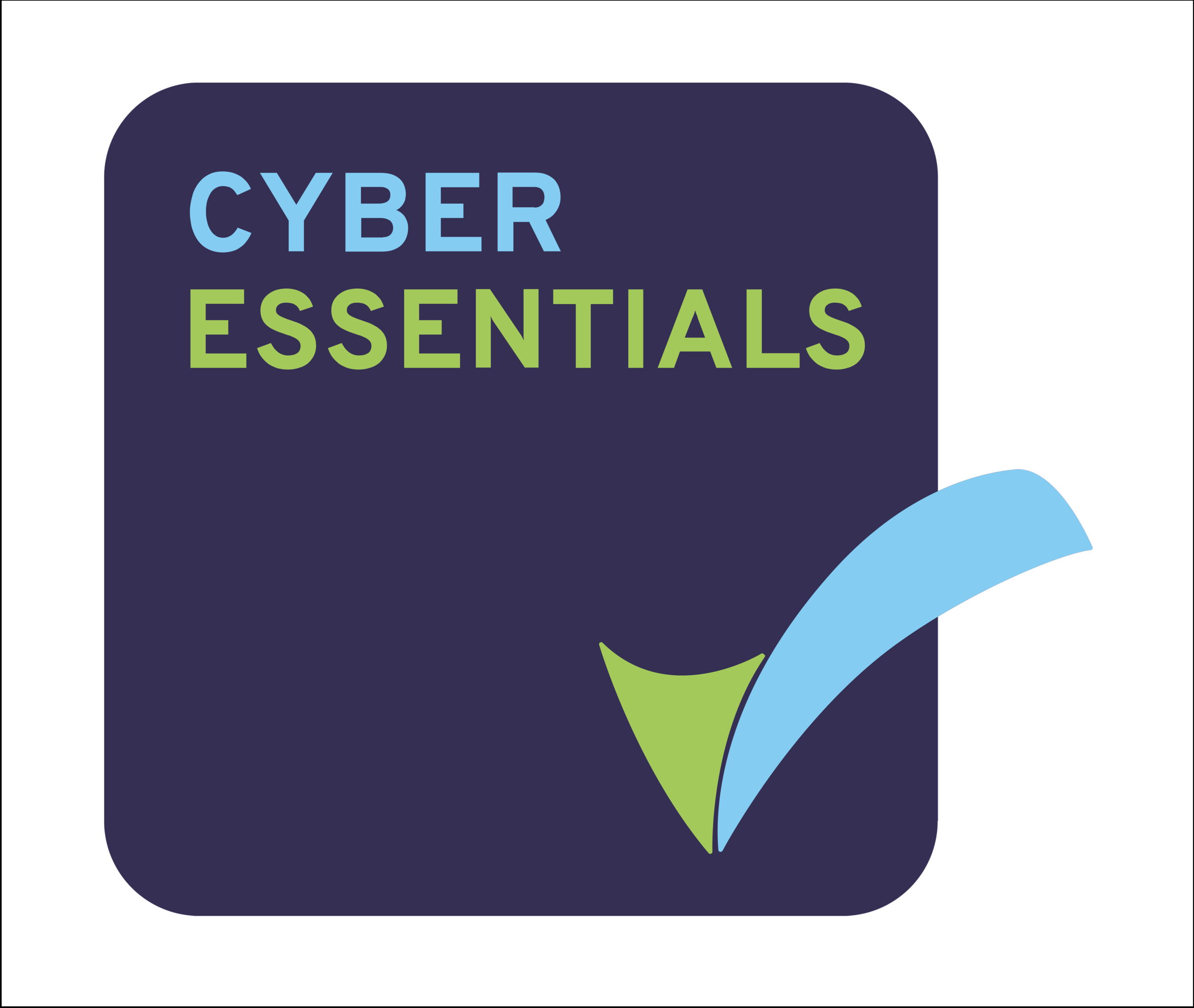 cyber-essentials-badge-high-res copy wbg.png