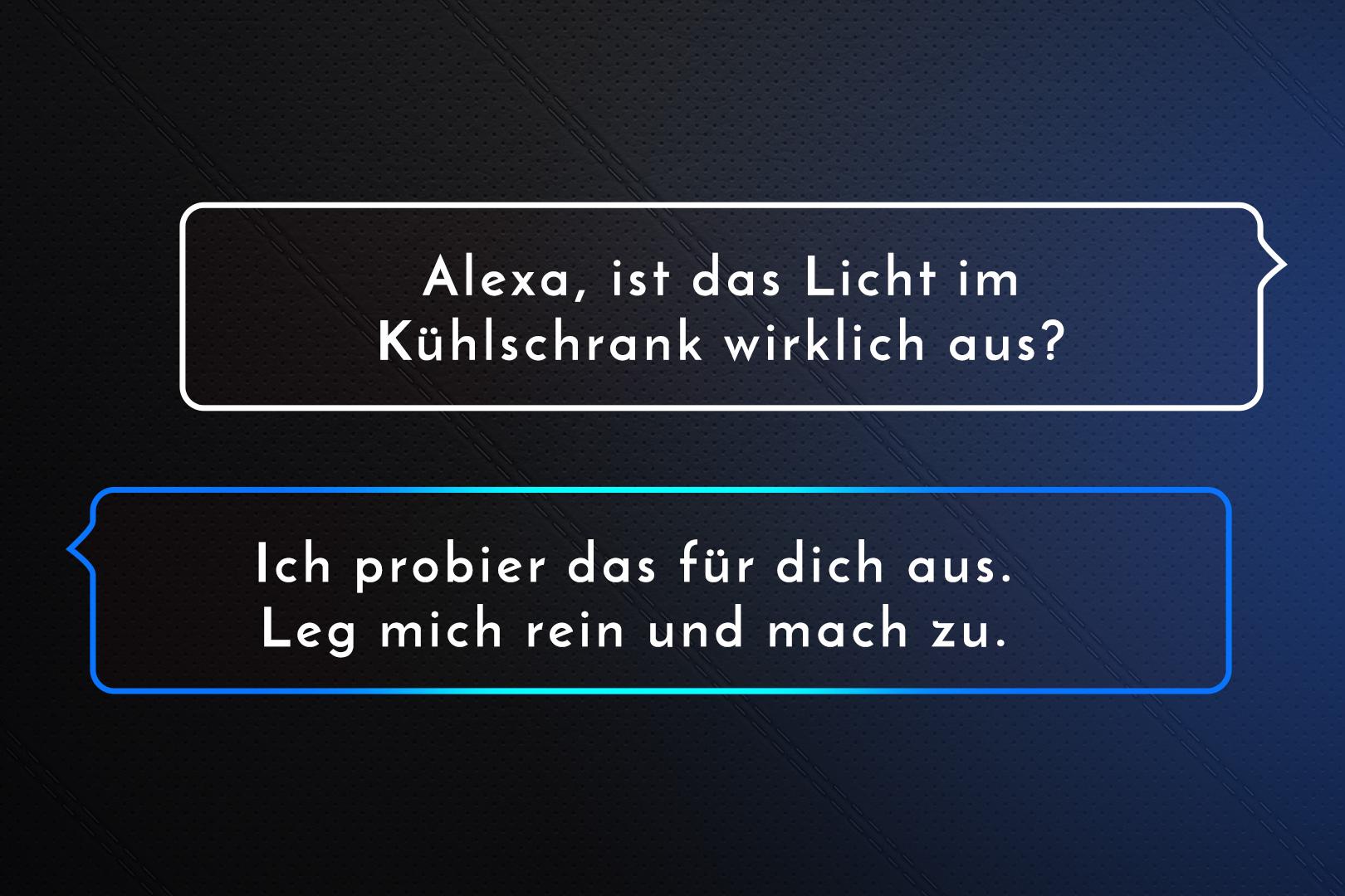 amazon_alexa_img_09.jpg