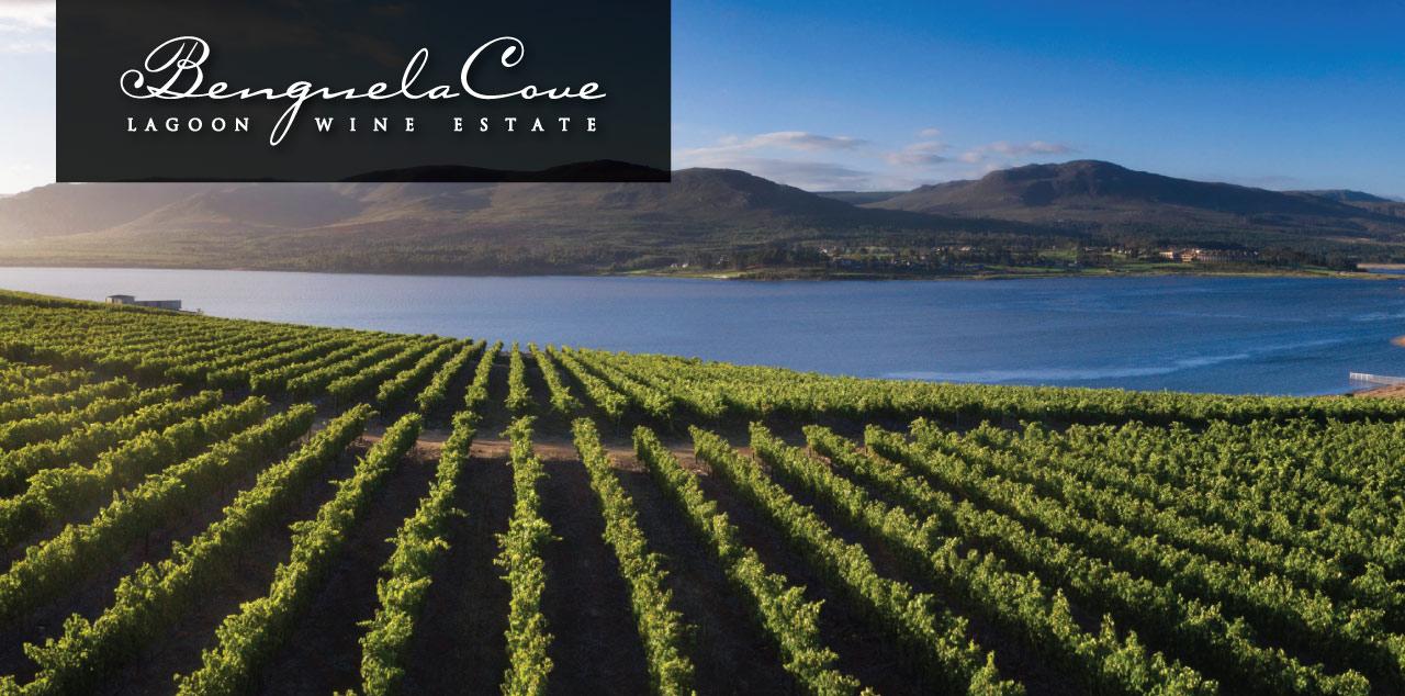 Vineyards-Wine-Tasting-1.jpg