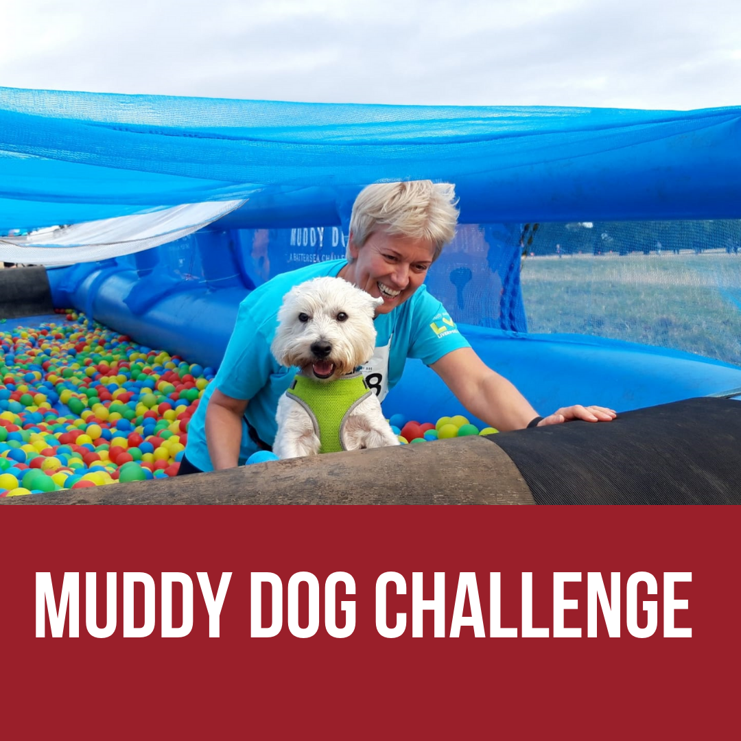 Muddy Dog Challenge - Battersea